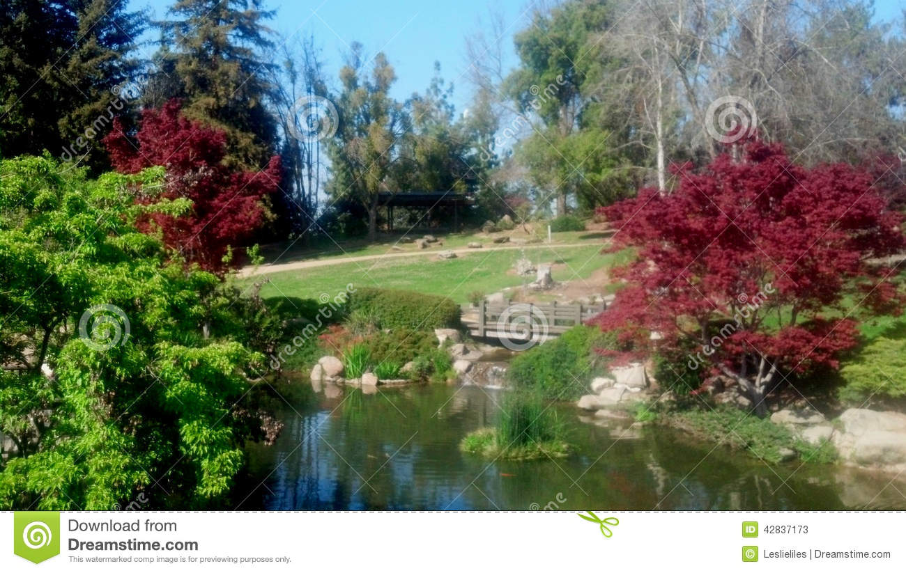Japanese Garden And Lake Editorial Stock Photo Image Of