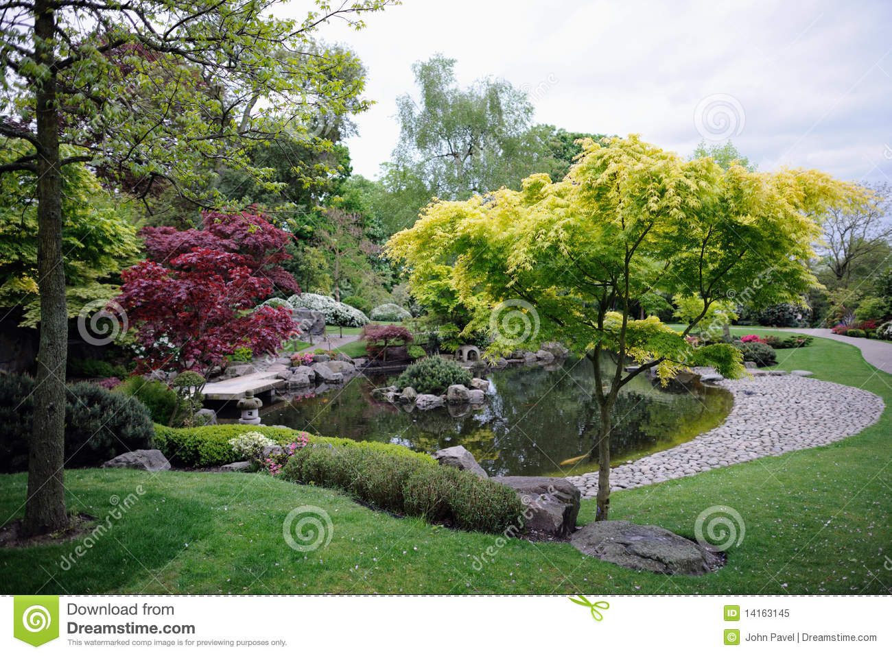 Japanese Garden With Maple Trees And Pond Stock Image