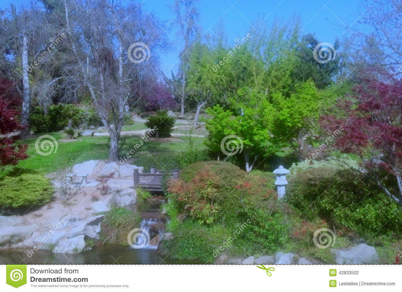Japanese Garden Stock Photo Image 42833502