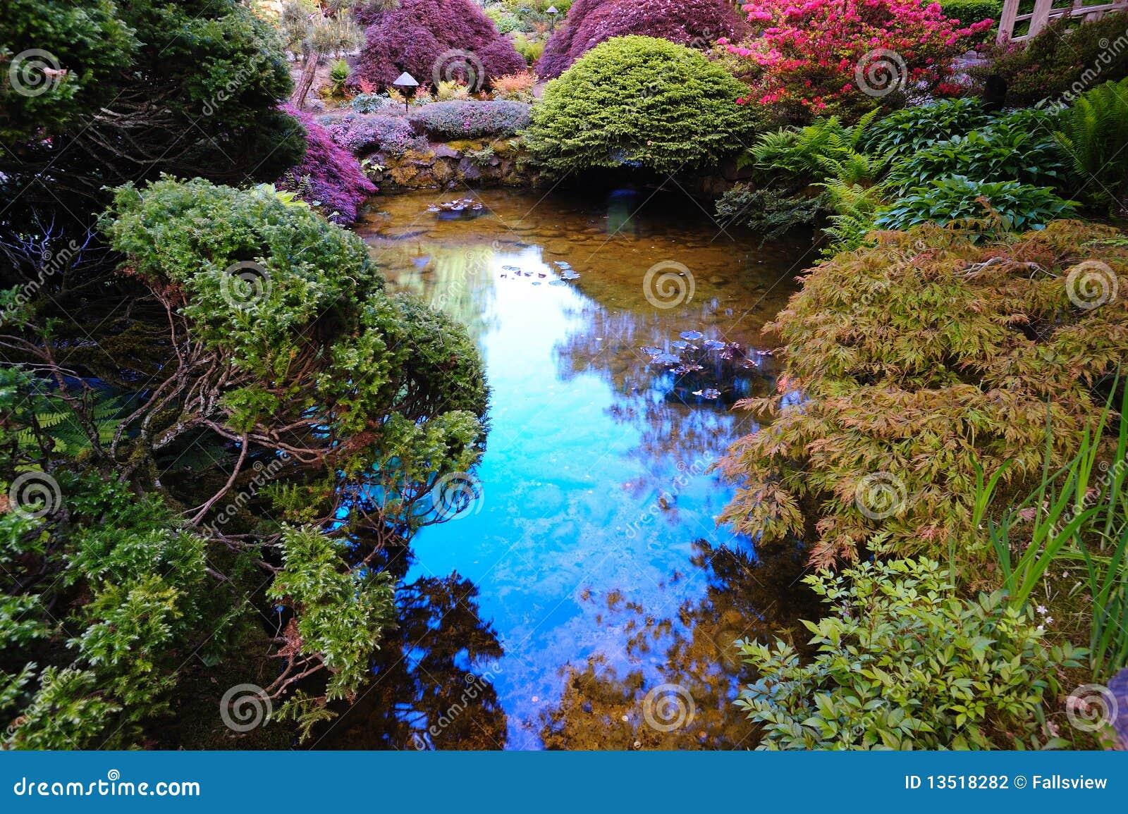 Japanese garden pond stock photography image 13518282 for Japanese garden pool