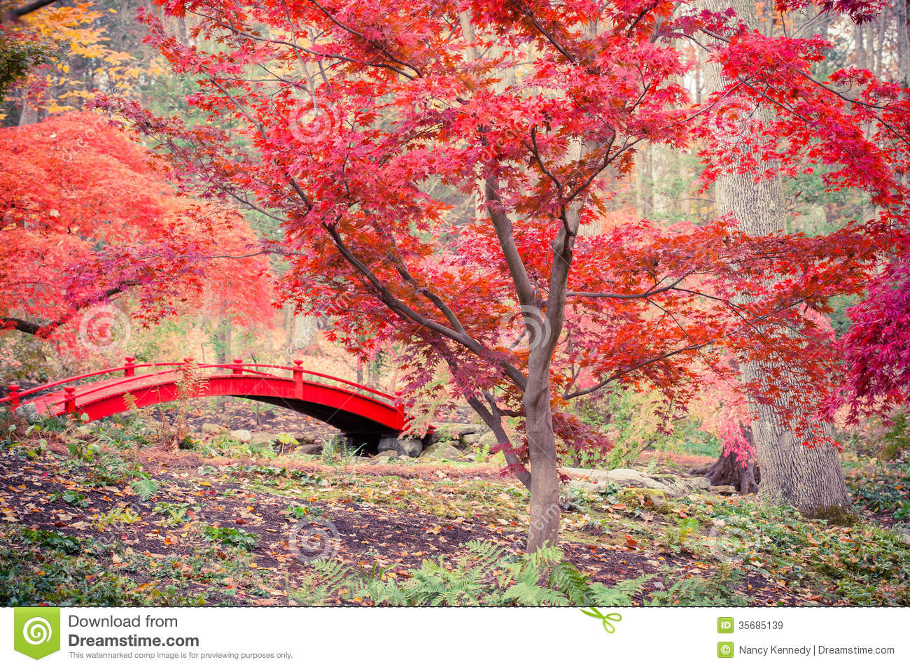 red japanese garden bridge - Red Japanese Garden Bridge