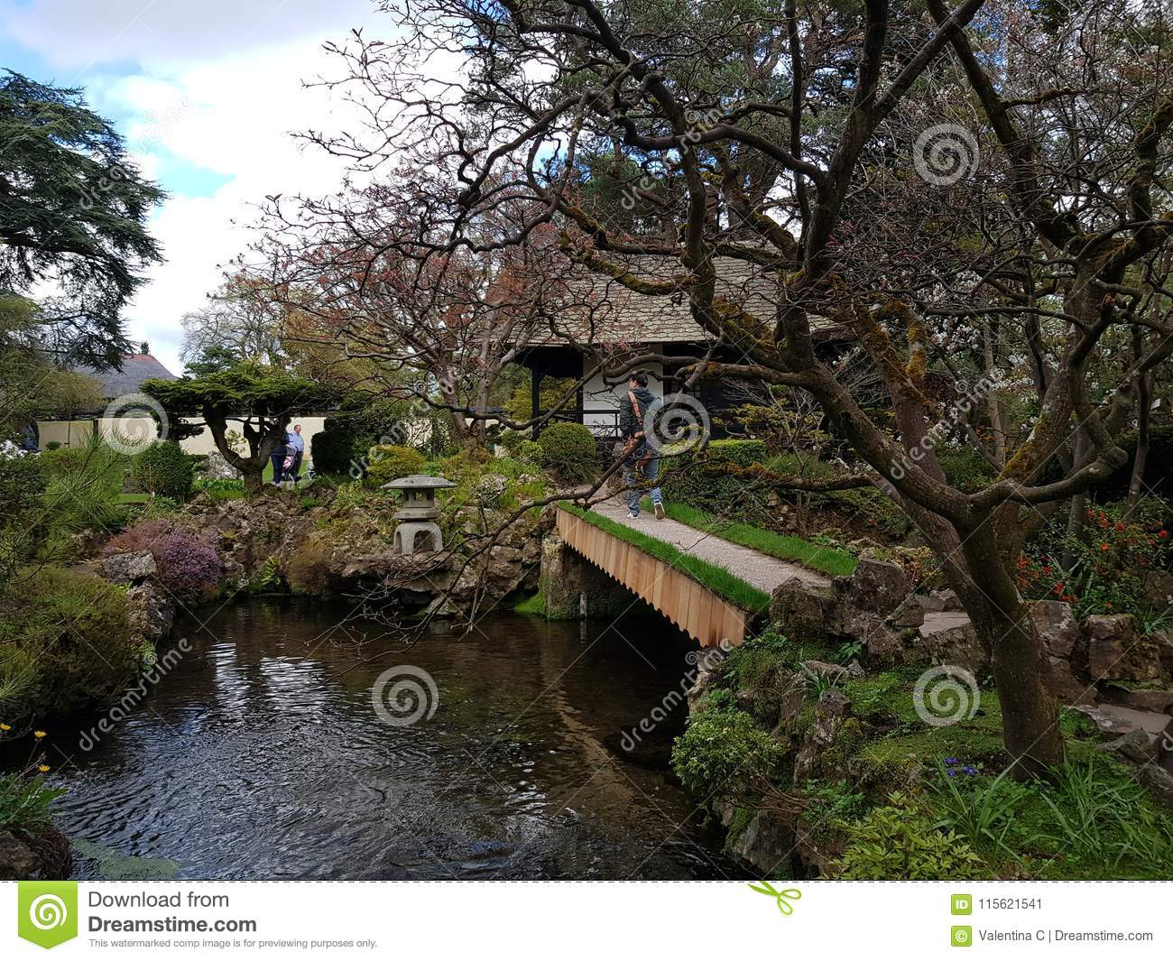 Japanese gardens editorial photo. Image of japanese - 115621541