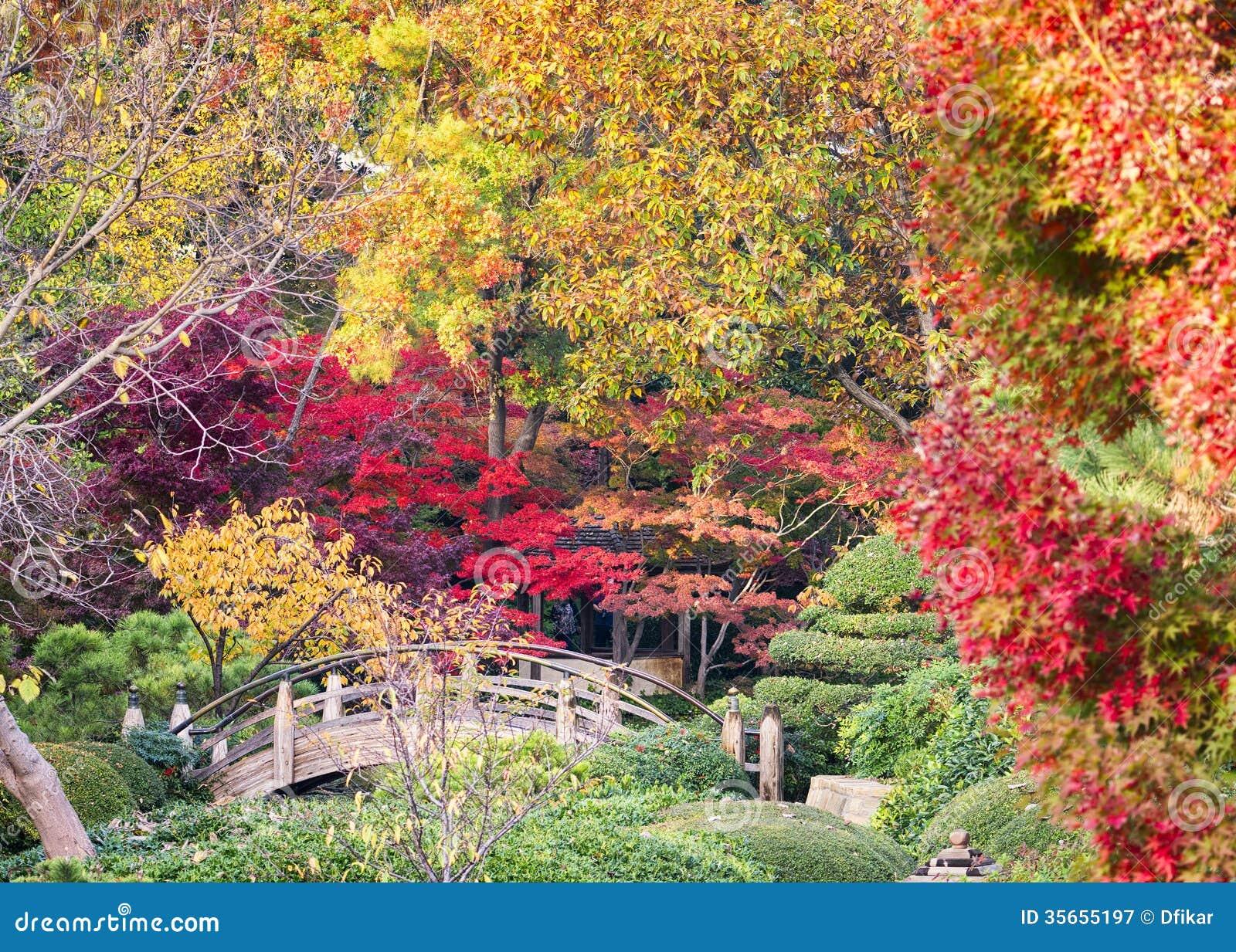 Japanese gardens in november royalty free stock for Japanese garden colors
