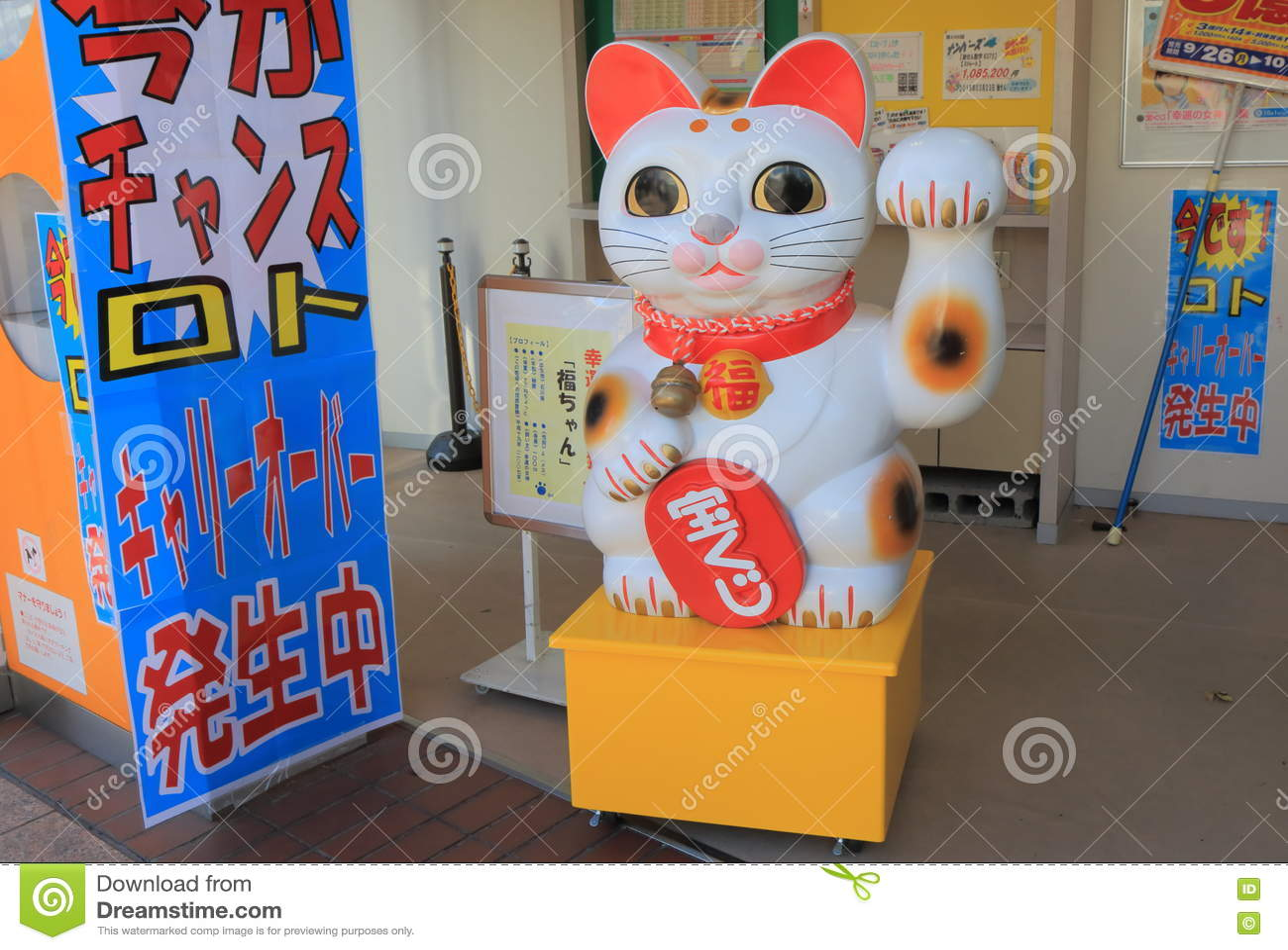 urethral obstruction cat
