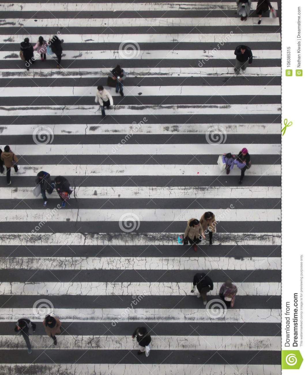 Japanes People On A Crossing