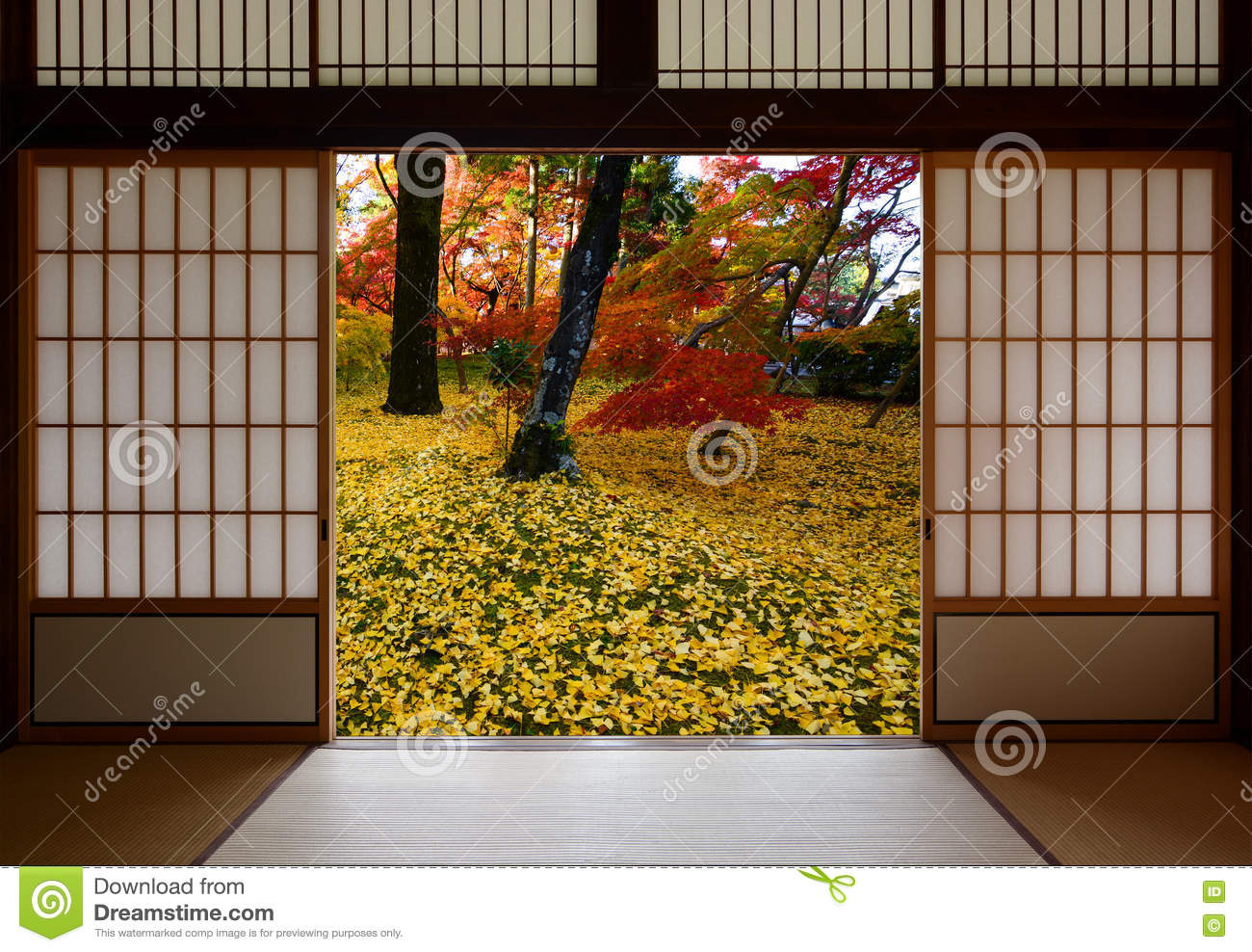 Japanese sliding wood doors open to an autumn sight of fallen yellow ginkgo leaves