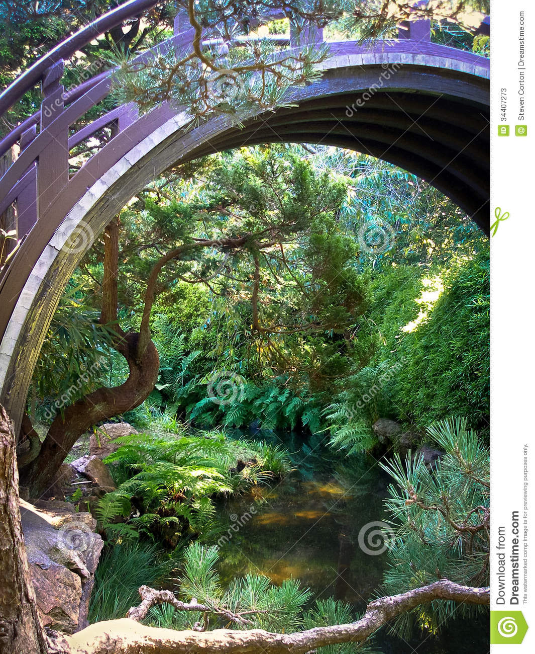 Japanese tea garden pond and bridge stock photos image for Koi pond japanese tea garden san francisco