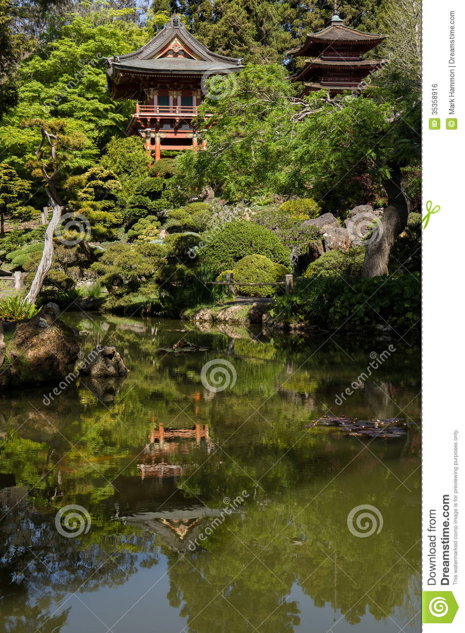 Japanese tea house with bonsai gardens stock photo image for Japanese garden plants and trees