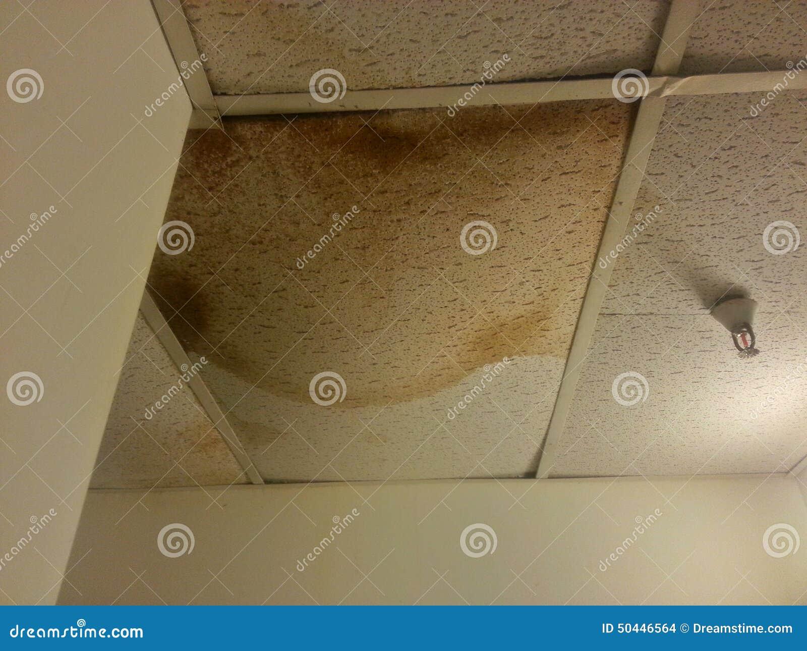 Ceiling tile needs repair water damage stock photo image 50446564 ceiling tile needs repair water damage doublecrazyfo Choice Image