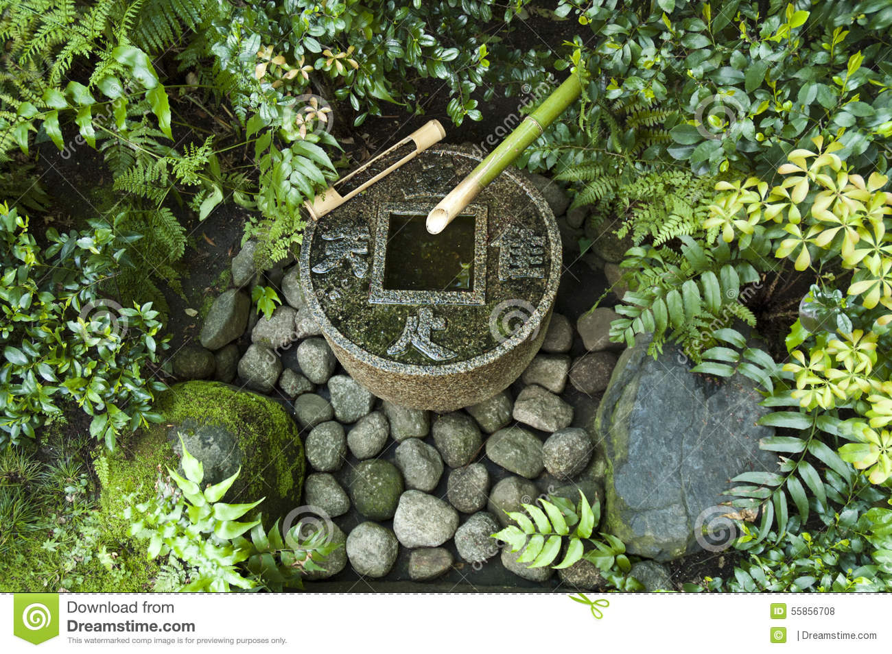 Japanese water fountain in tokyo tea house stock photo for Japanese bamboo water feature