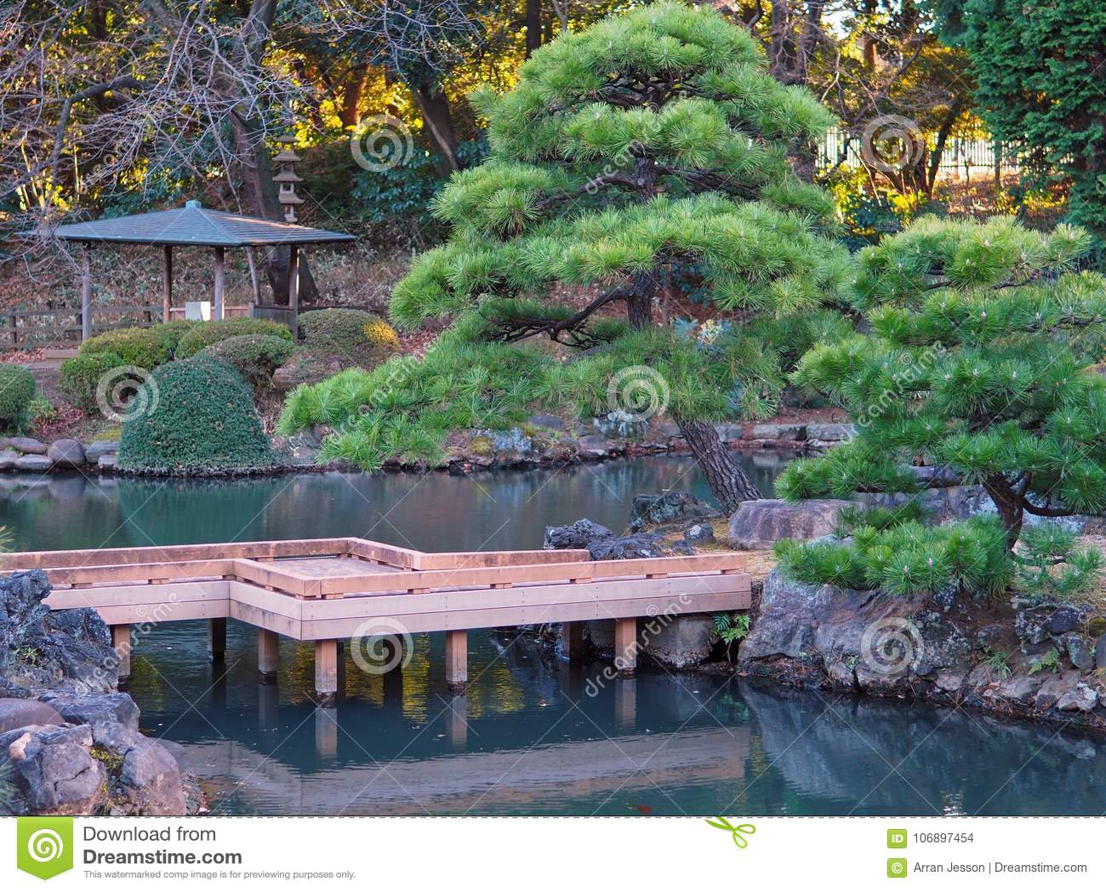 Japanese Water Garden In Tokyo