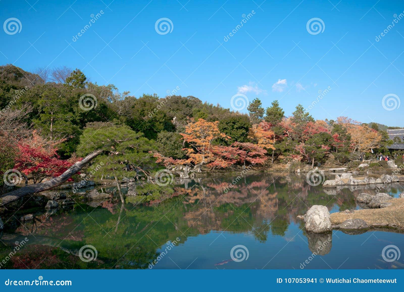 Japanese Zen Garden, Autumn Kyoto Stock Image - Image of natural ...