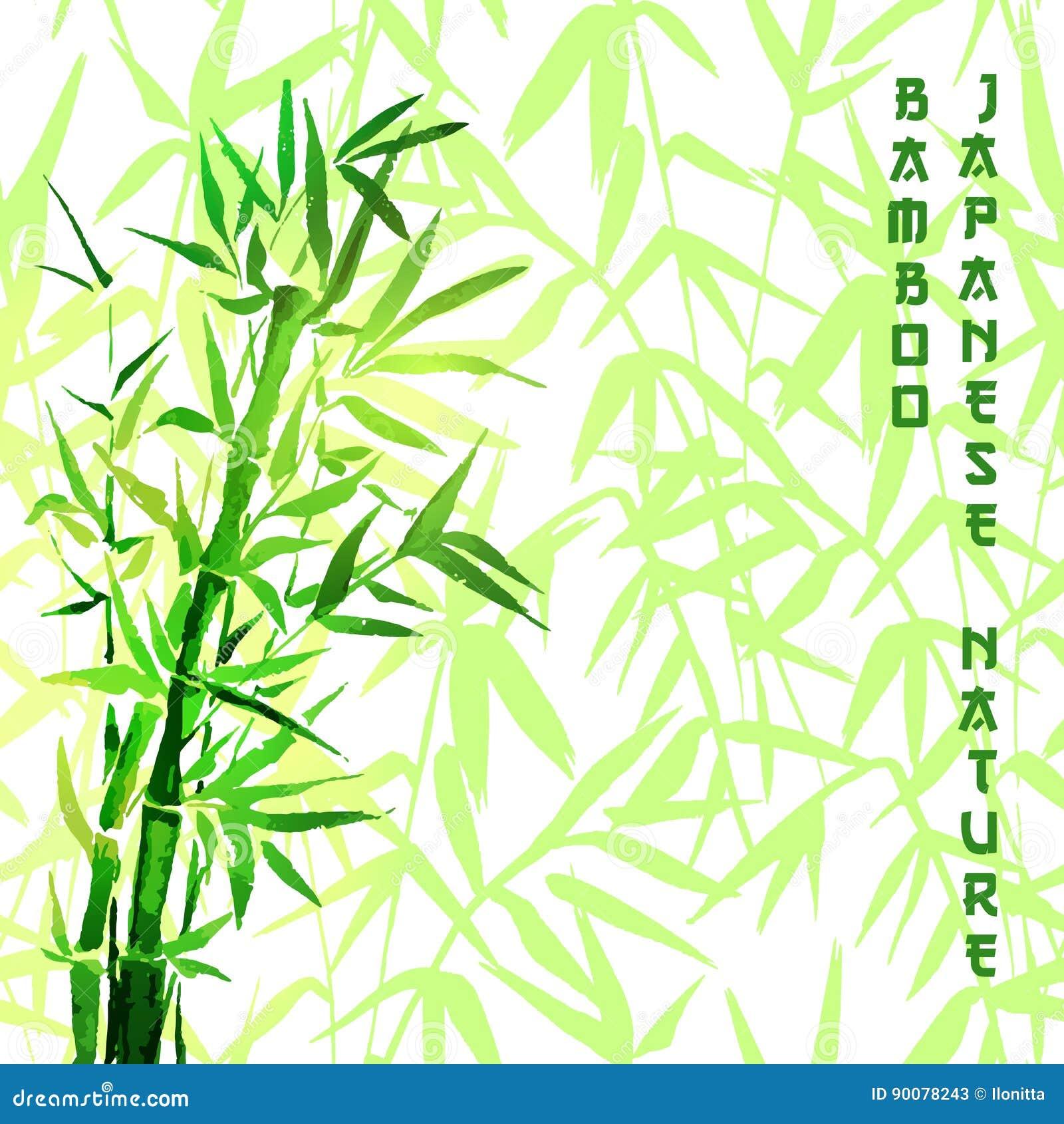Perfekt Japanische Anlage Des Bambusbaums Oder Baum Traditionelle Sumi Malerei  Vektorillustration