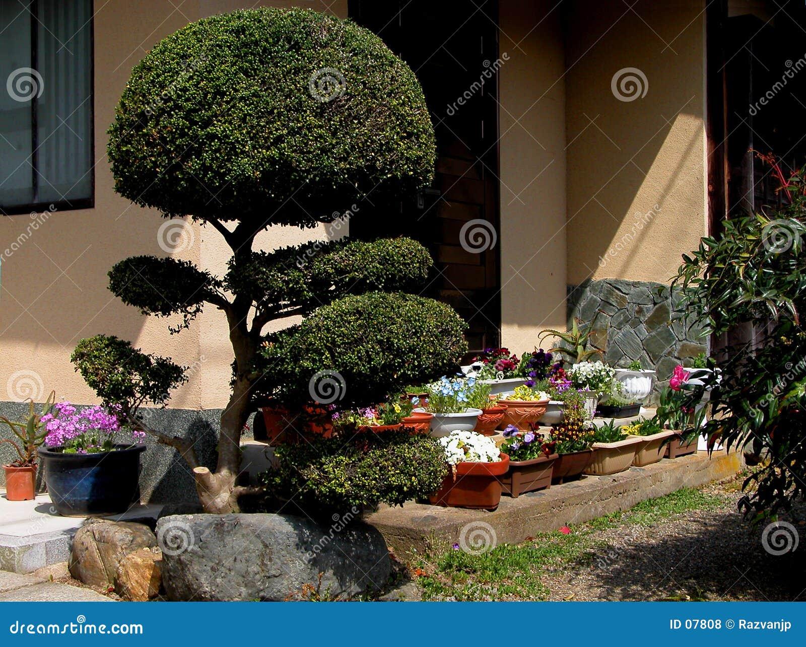 Japanische Veranda