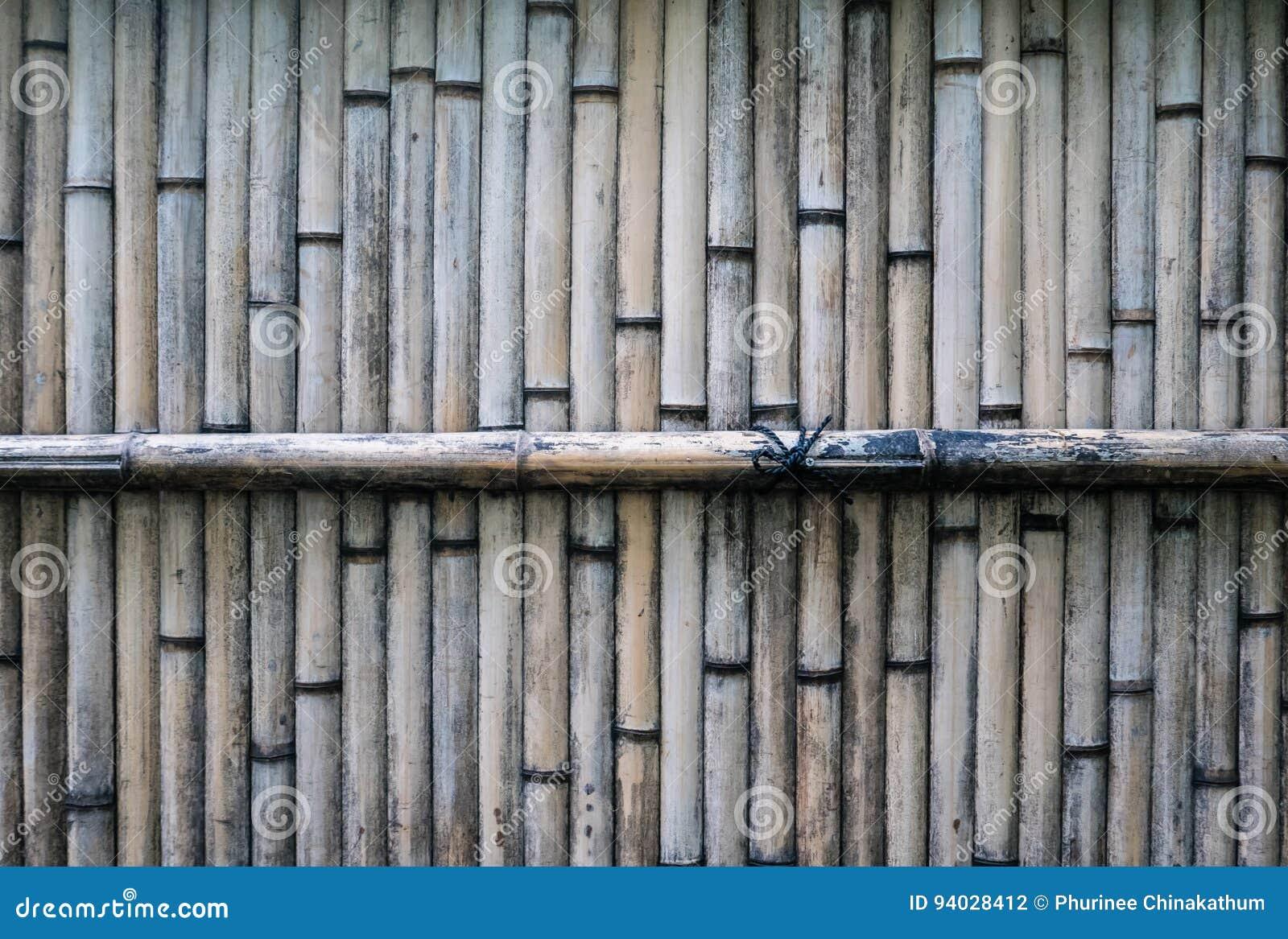 japanischer bambuszaun stockfoto. bild von waldung, barke - 94028412