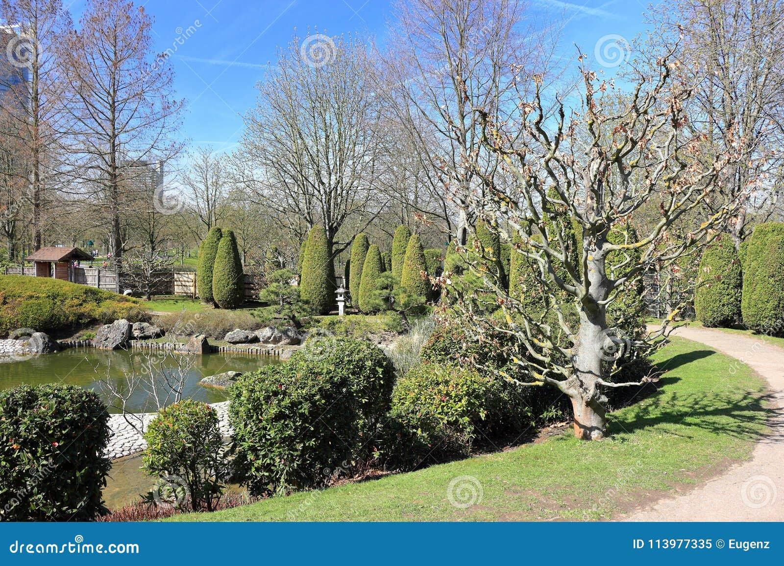 Japanischer Garten In Rheinaue-Park Bonn, Deutschland Stockbild ...