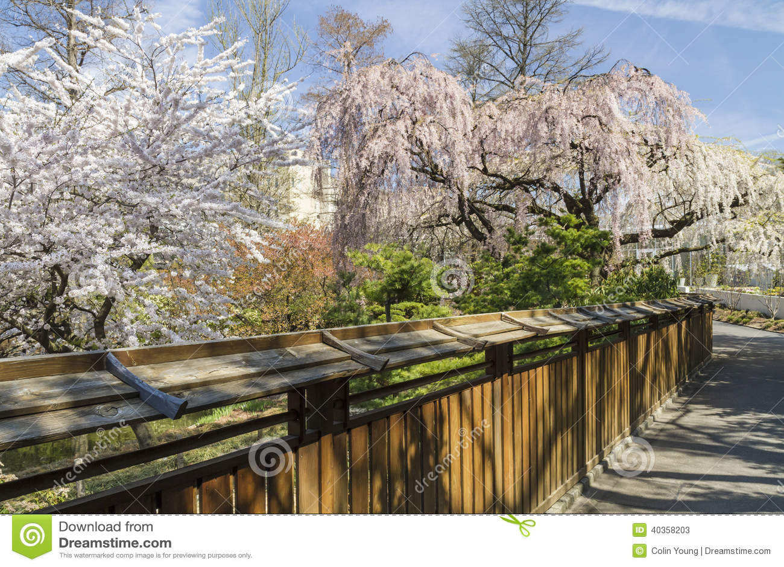 Japanischer Garten Zaun Stockfoto Bild