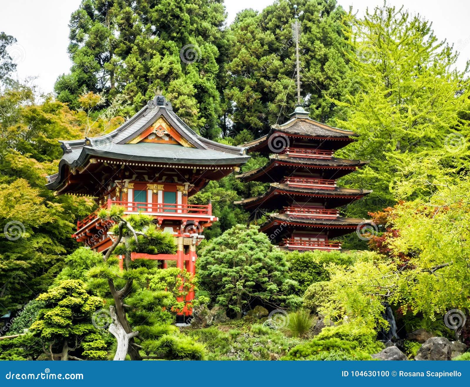 Download Japanse Theetuin, Golden Gatepark, San Francisco, Californië, CA Stock Foto - Afbeelding bestaande uit californië, aantrekkelijkheid: 104630100