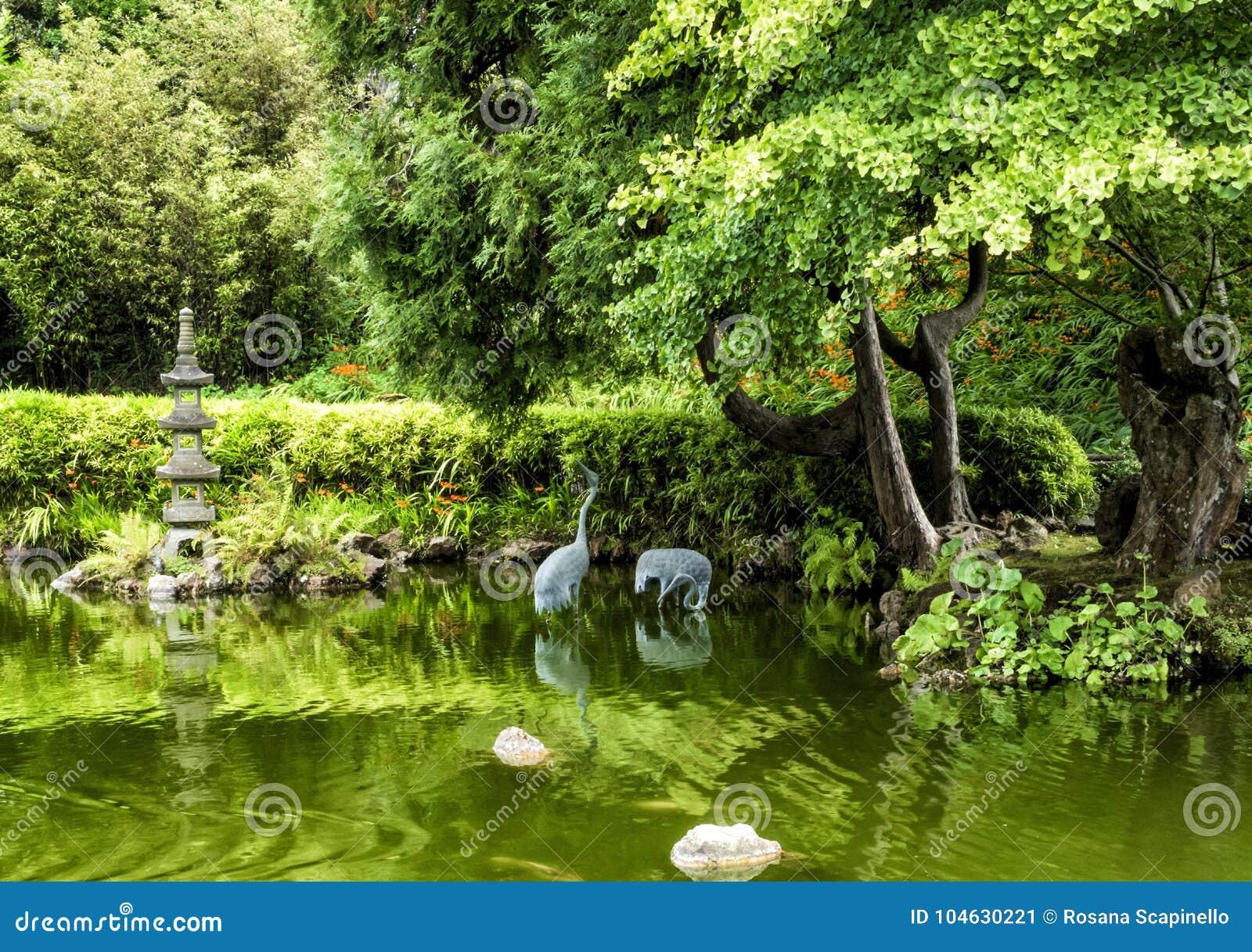Download Japanse Theetuin, Golden Gatepark, San Francisco, Californië, CA Stock Afbeelding - Afbeelding bestaande uit boeddhistisch, japans: 104630221