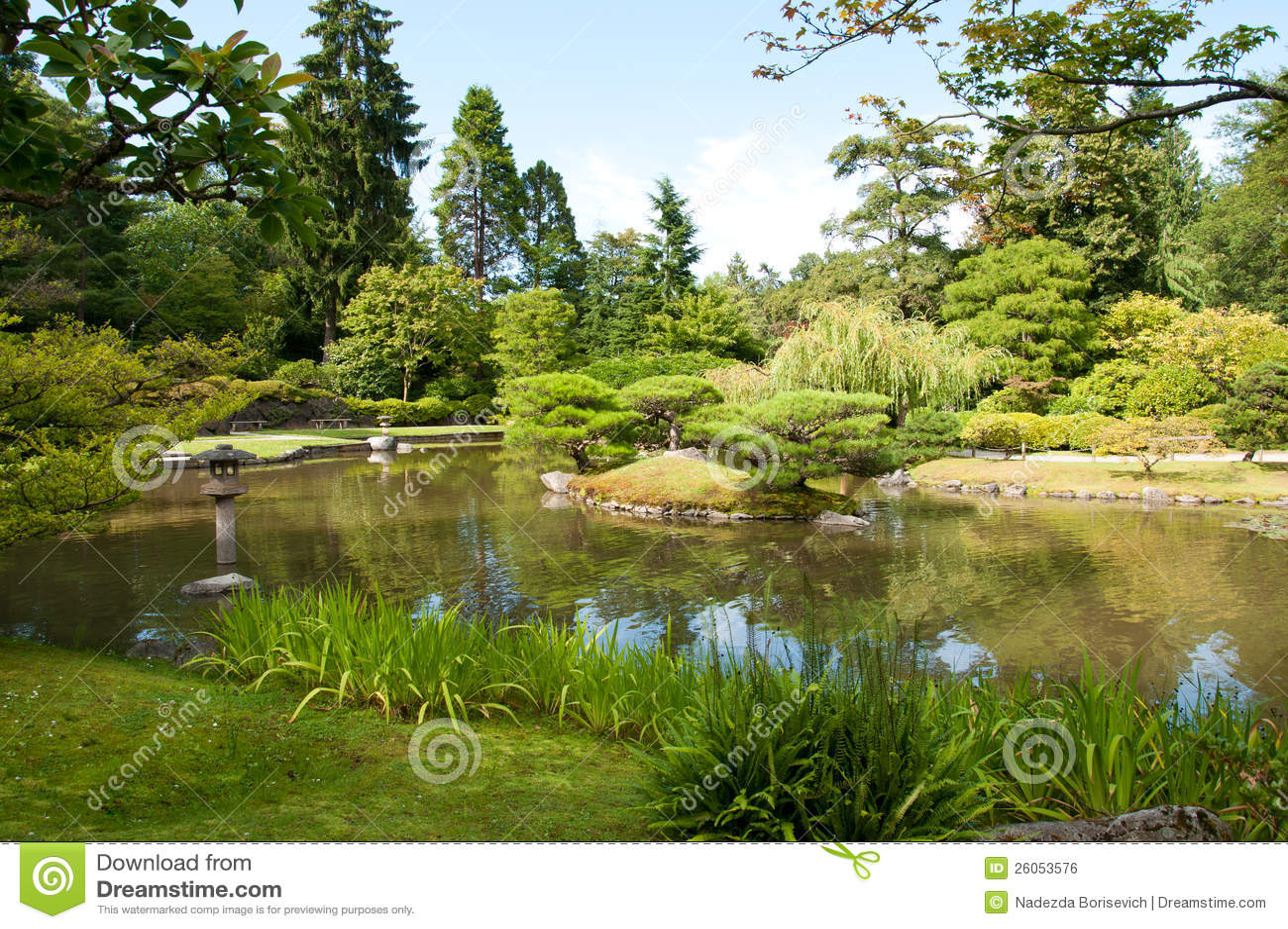 Japanse tuin vijver lantaarn royalty vrije stock afbeelding afbeelding 26053576 - Foto van tuin vijver ...