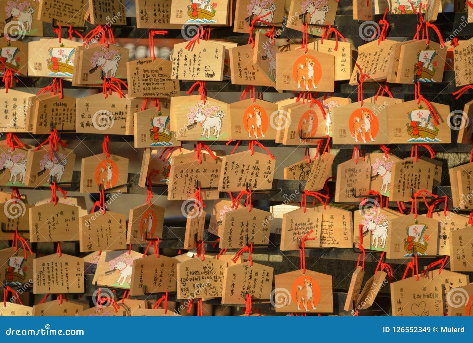 Japansk träbe platta, Ema, april 2018