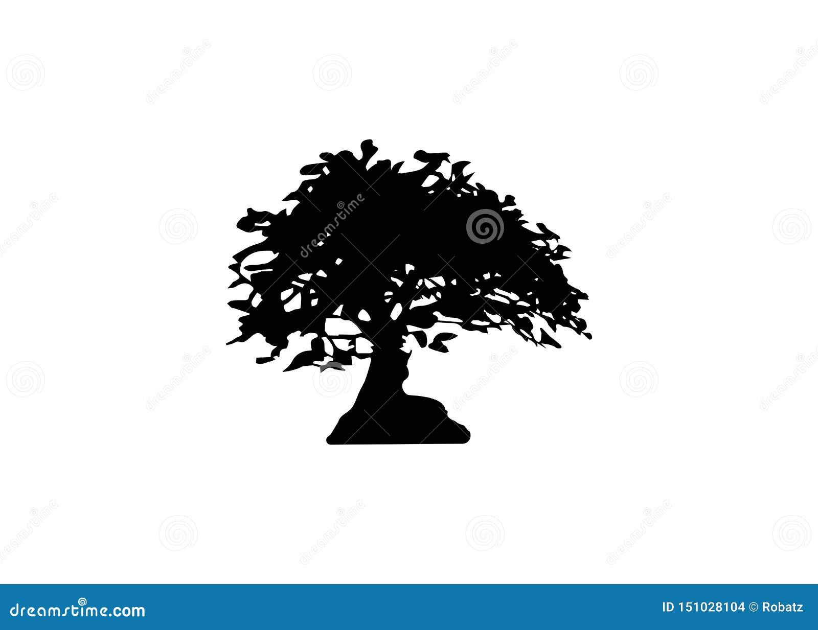 Japanska symboler för kontur för växt för bonsaiträdlogo på vit bakgrund, svart kontur av bonsai Detailed avbildar Isolerad vekto