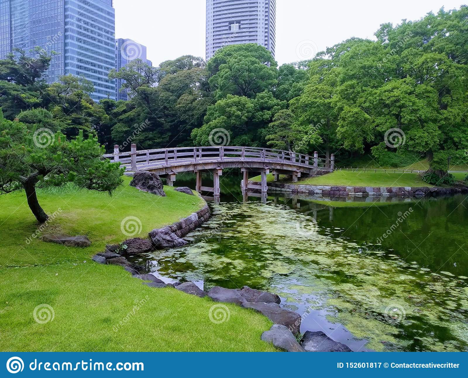 Japończyka ogródu mostu widok w Tokio