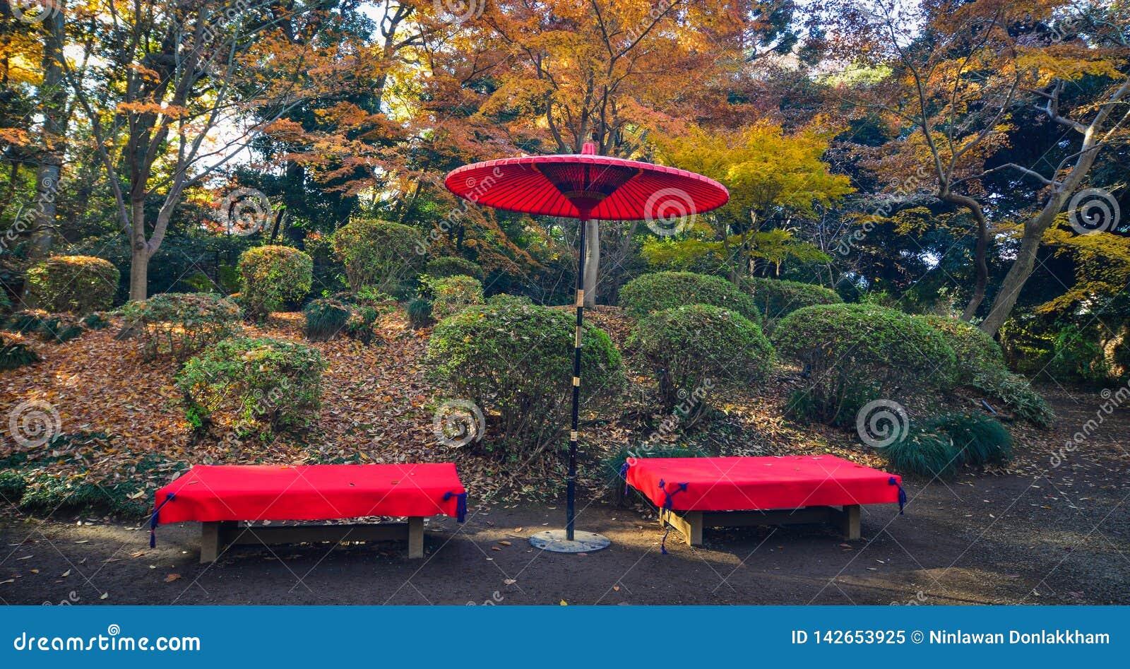 Japo?ski czerwony parasol przy miasto parkiem