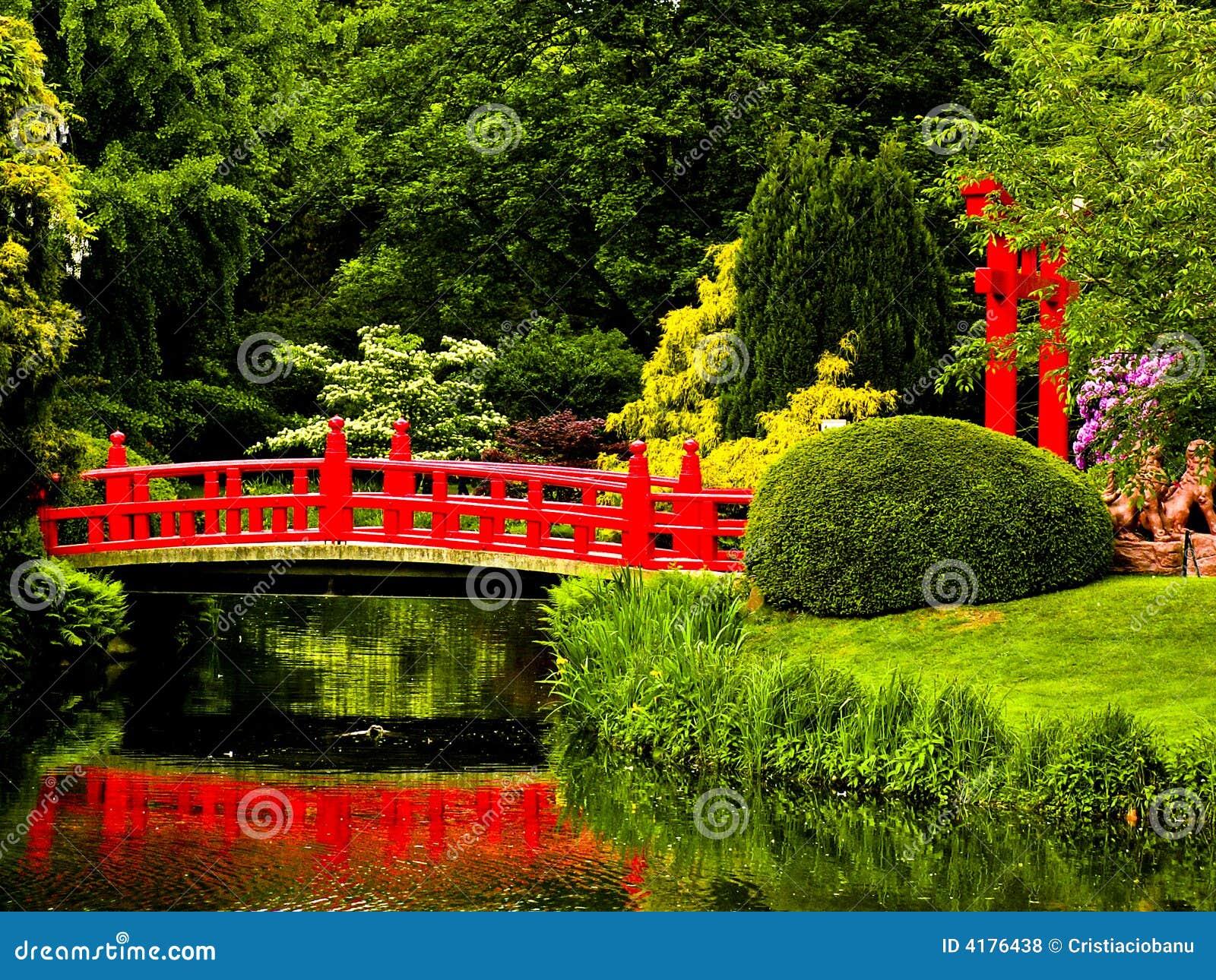 Japonais de jardin