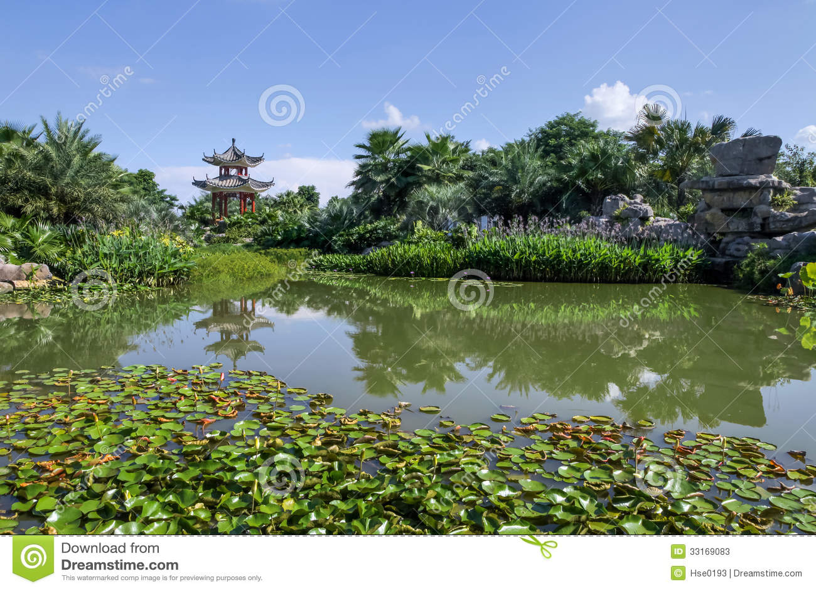 Jard n chino cl sico del verano for Jardin chino