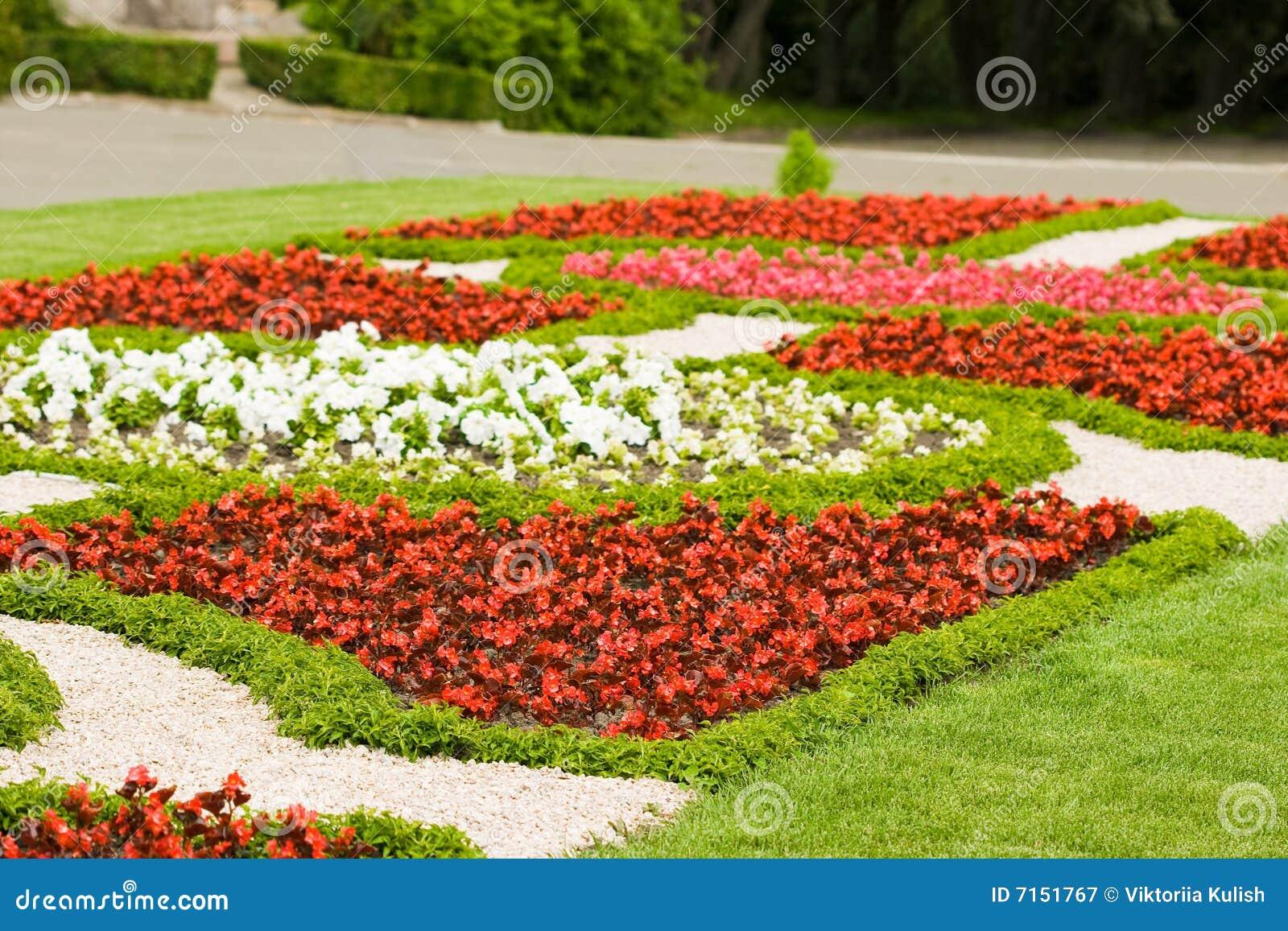 Jardín con muchas flores