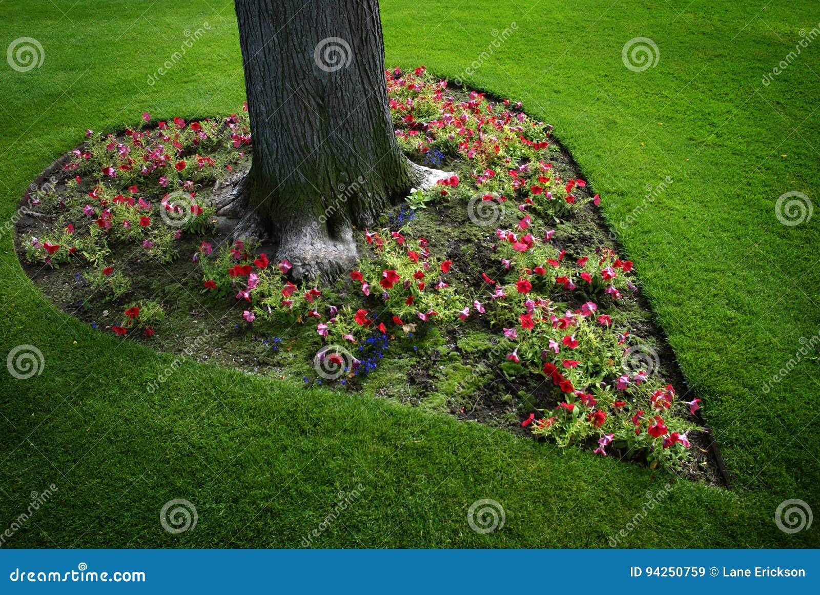 Jardín De Flores En Forma De Corazón Alrededor Del árbol Imagen De