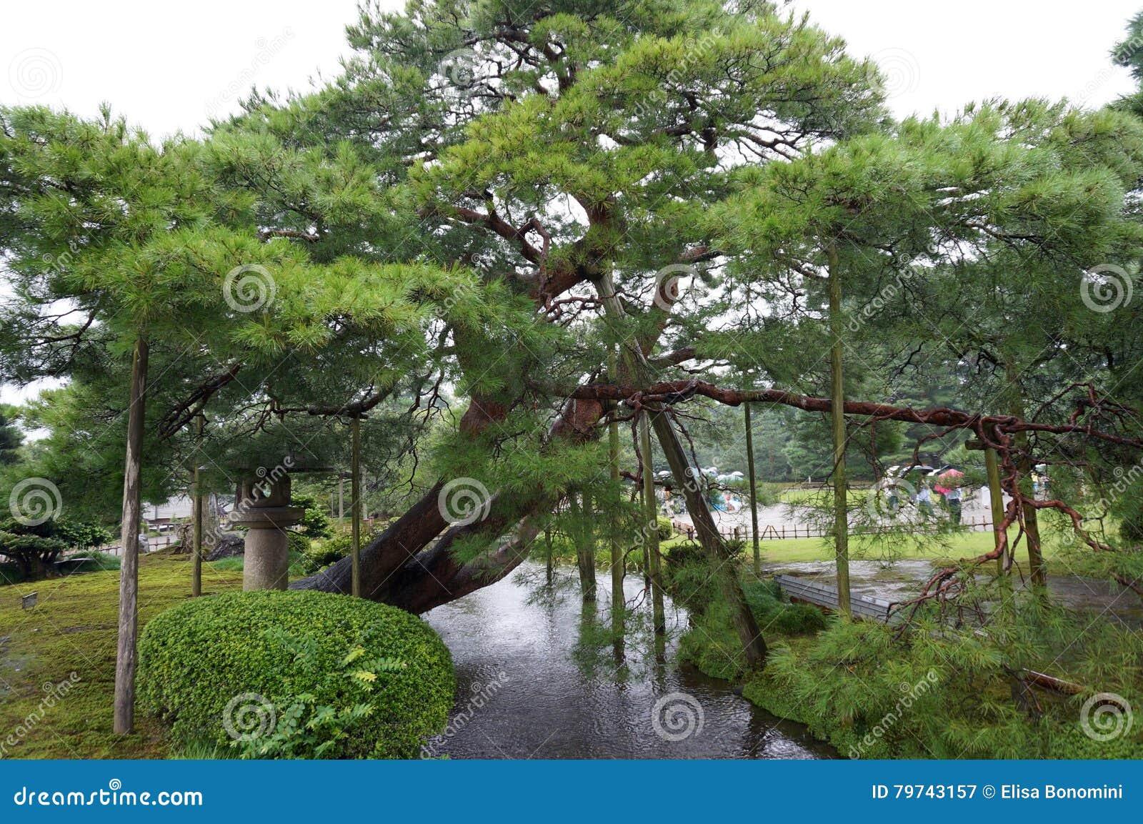 Jardín de Kanazawa