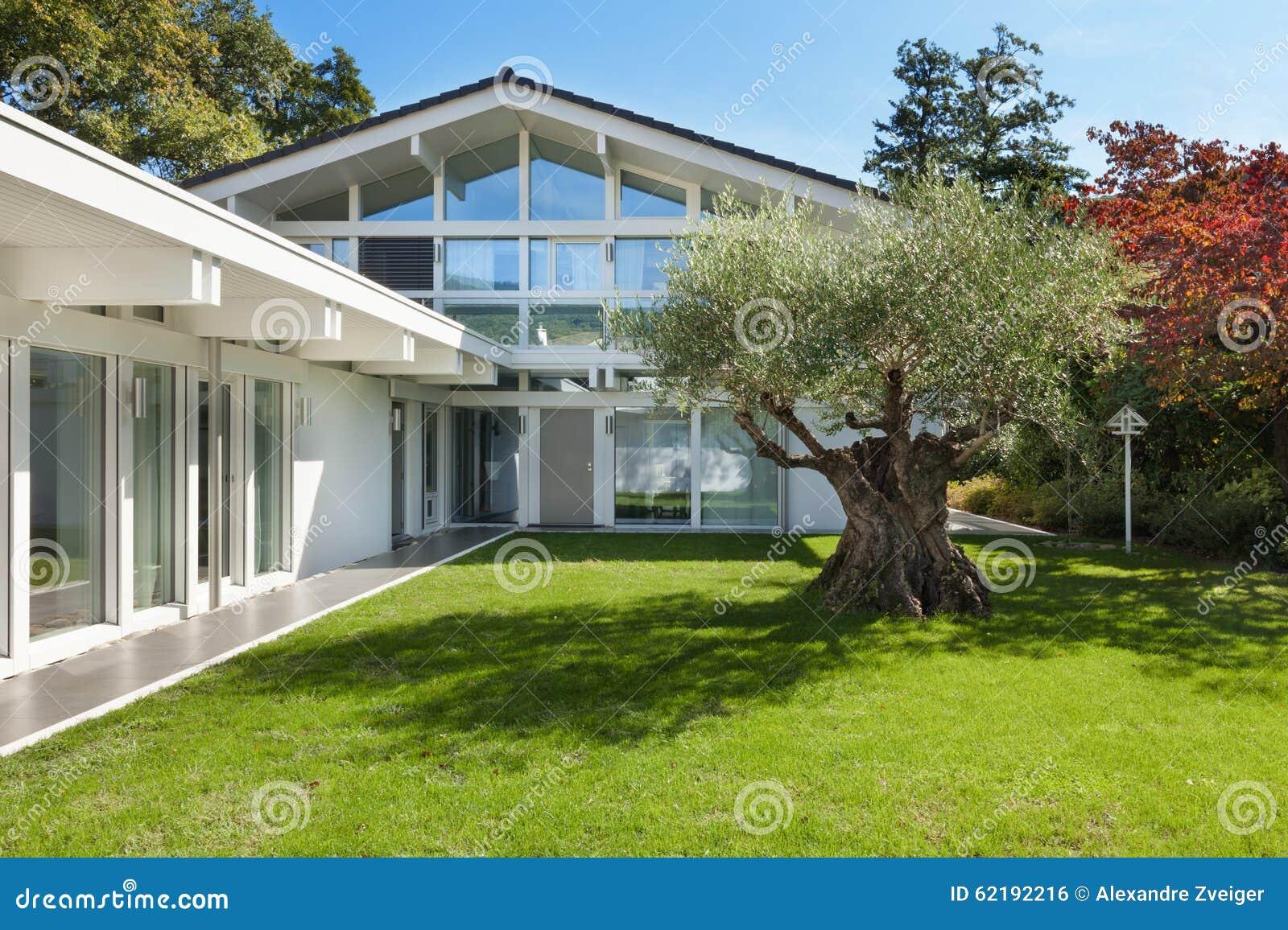 Jard n de una casa moderna con el olivo foto de archivo for Casa moderna jardines
