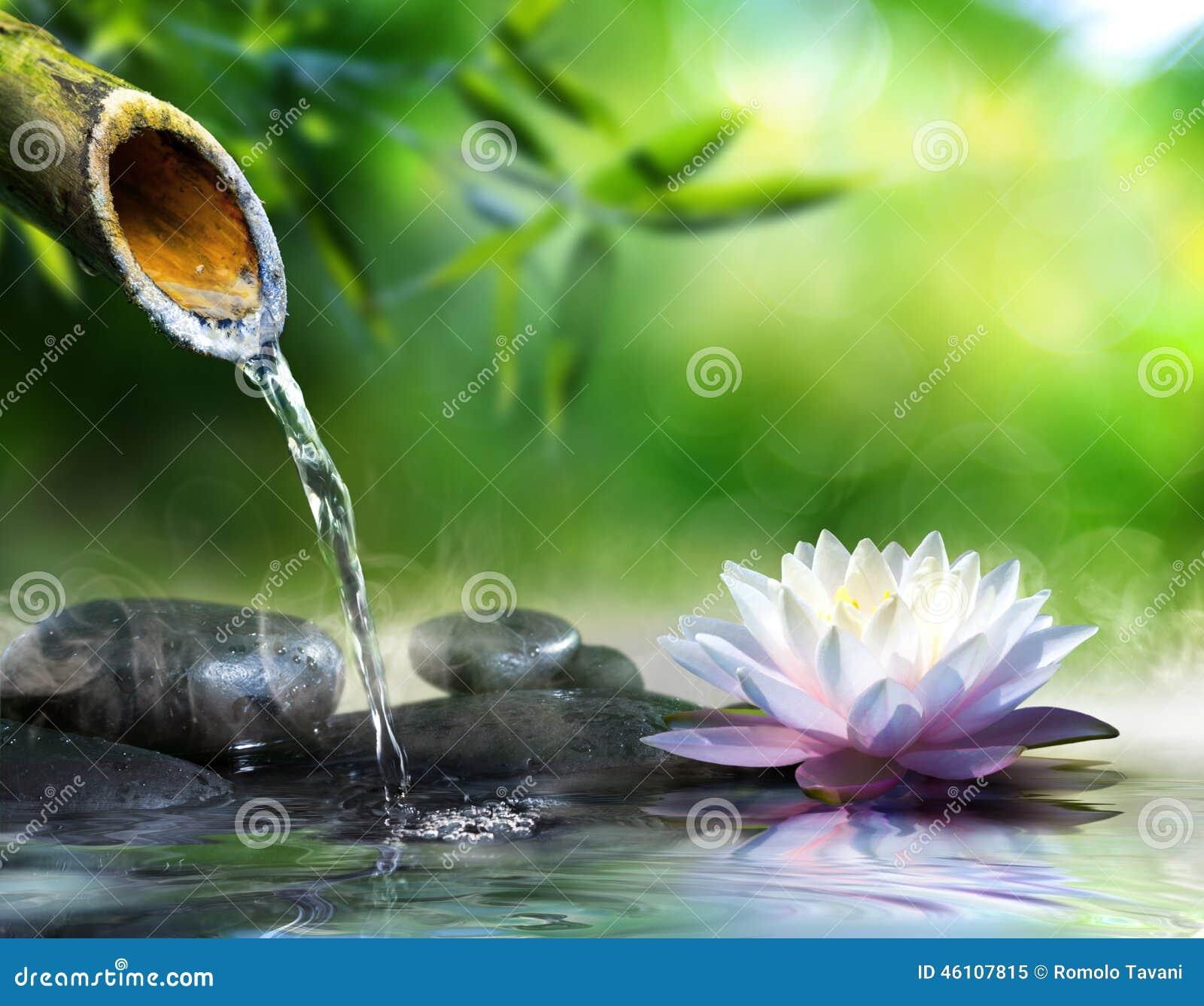 Jard n del zen con las piedras del masaje imagen de for Piedras para jardin zen