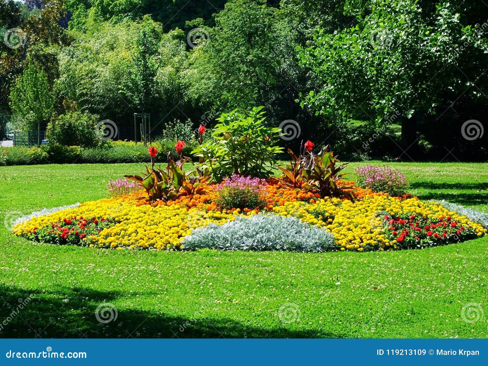 Jardín, flor, parque, primavera, flores, naturaleza, paisaje, verde, verano, árbol, hierba, campo, amarillo, hermoso, tulipán, pl