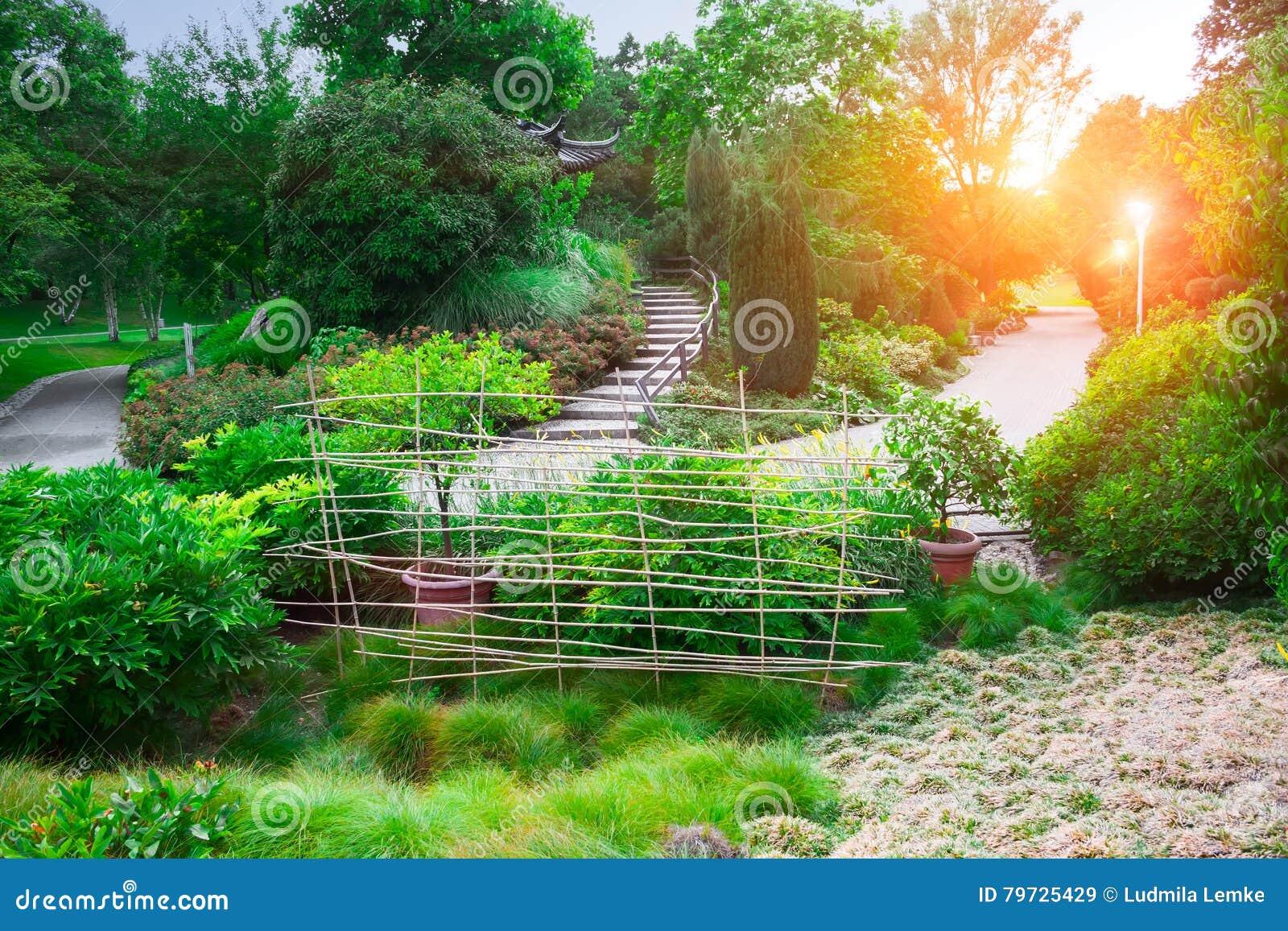 Jardín hermoso del paisaje