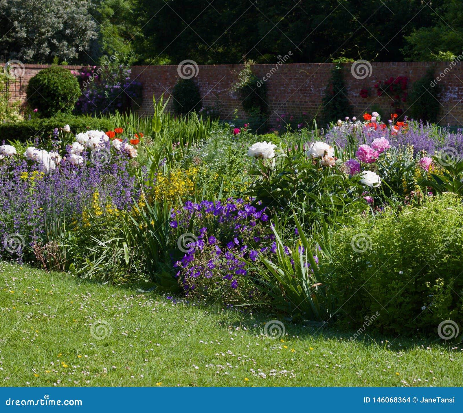 Jardín inglés de la cabaña con el césped en primero plano, cama de flor enorme y pared en fondo con el espacio de la copia - imag