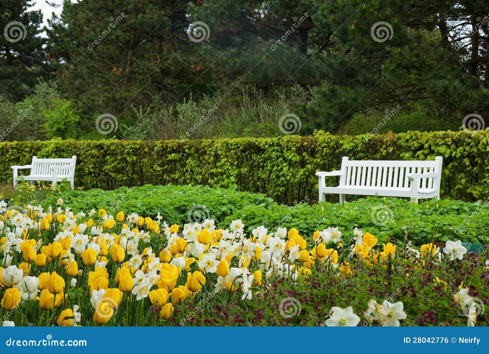 Jard n keukenhof holanda de la primavera imagen de for Jardin keukenhof