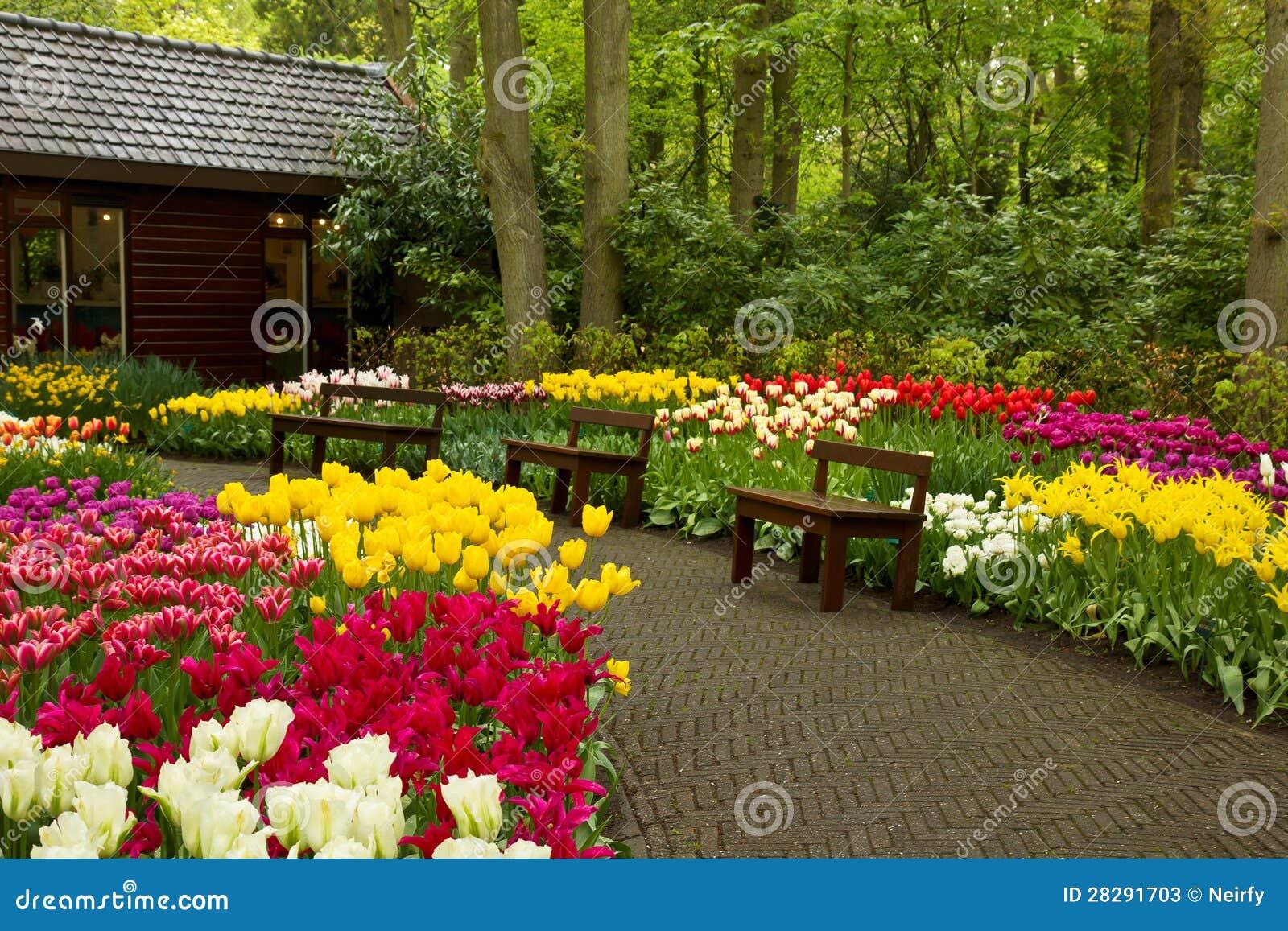 Jard n keukenhof holanda de la primavera fotos de archivo for Jardines de primavera