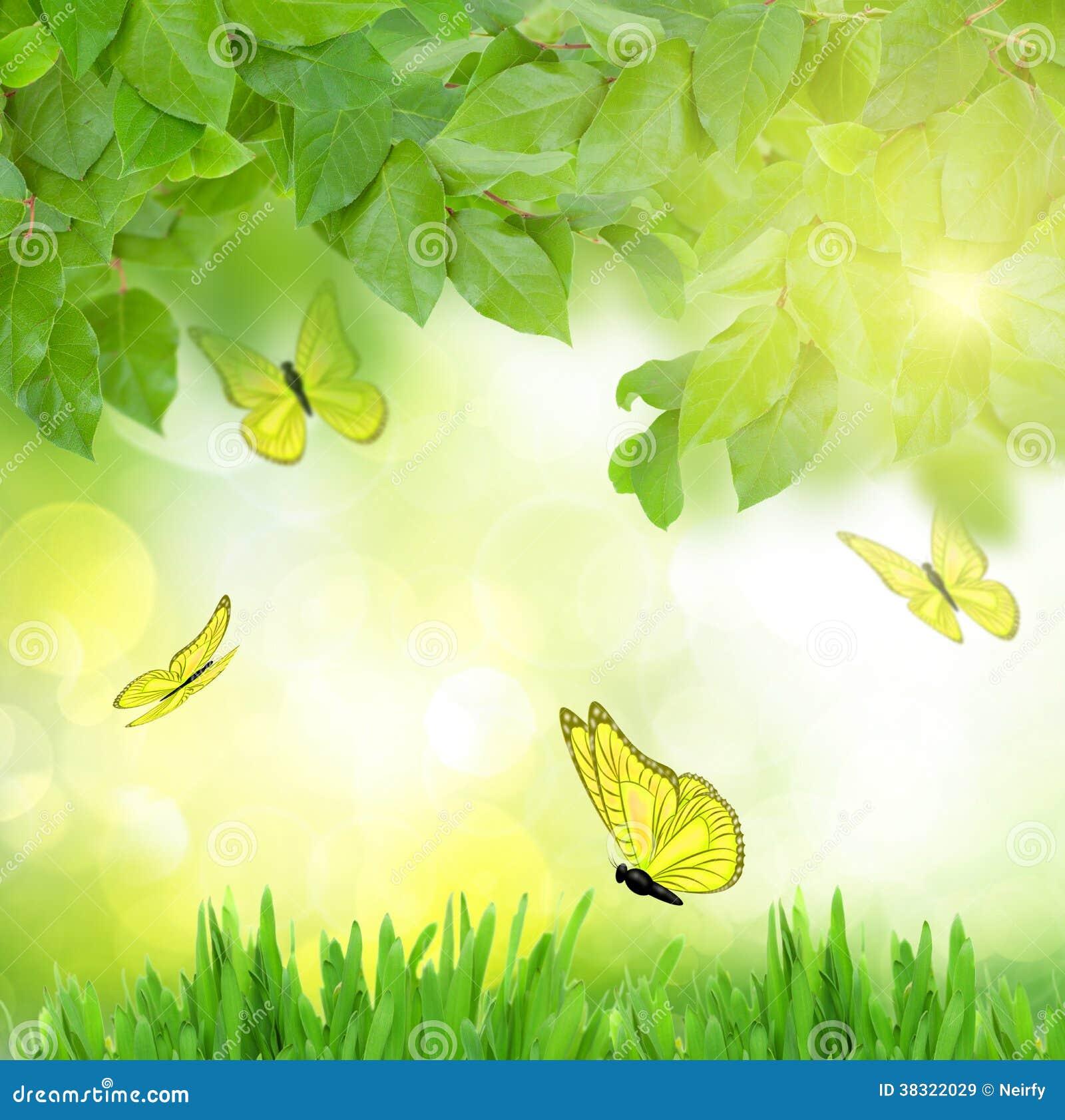 Jard n verde con las mariposas im genes de archivo libres for Jardin verde