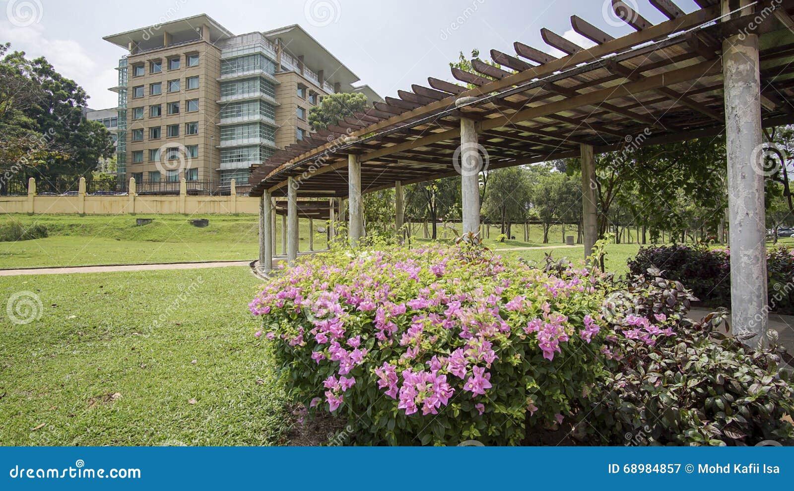 Jardín y flores hermosos verdes