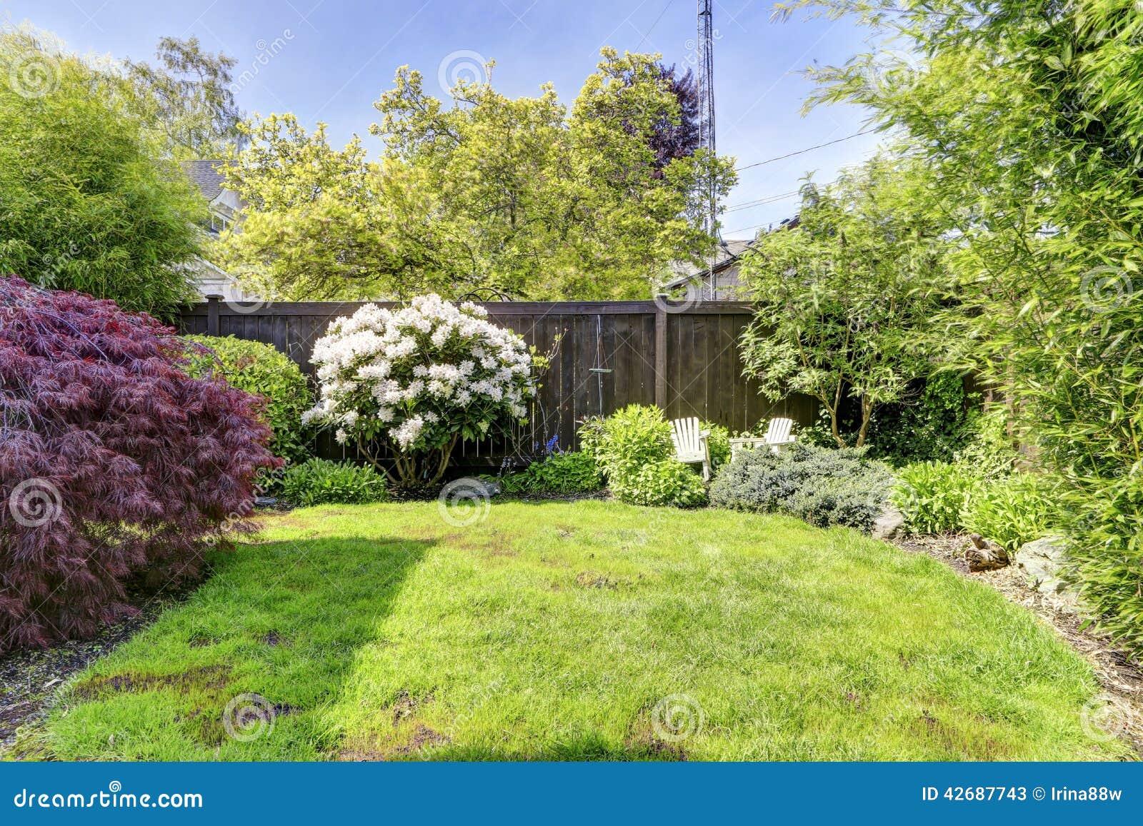 jardim de quintal fotos:Quintal cercado com gramado, rododendro de florescência e arbustos.
