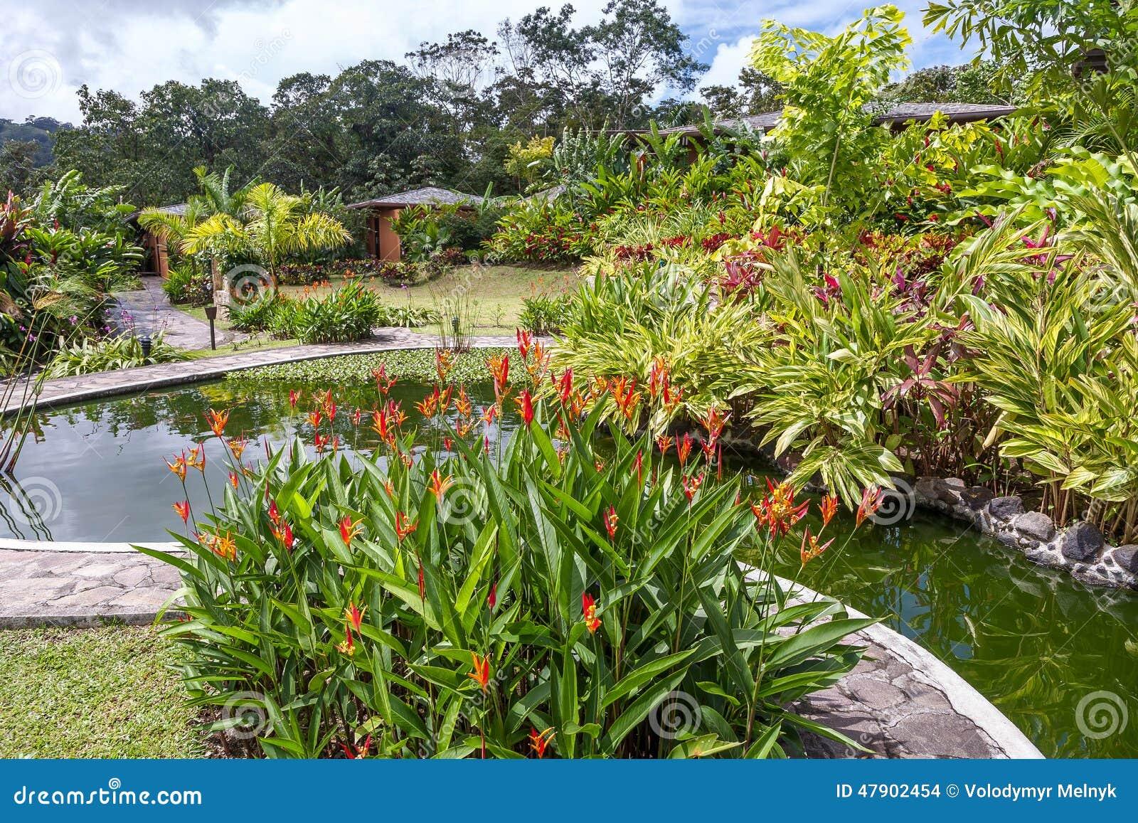 jardim flores e plantas:Jardim Com As Várias Plantas Tropicais E Flor Foto de Stock – Imagem