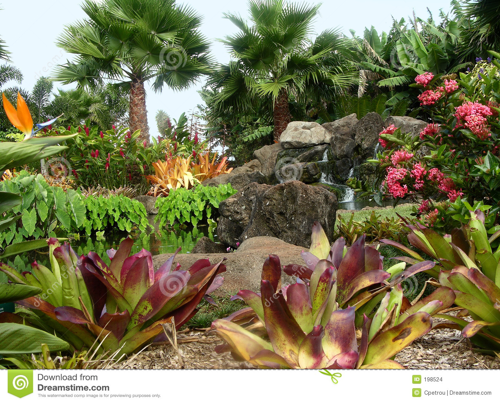 Jardim da plantação de Dole