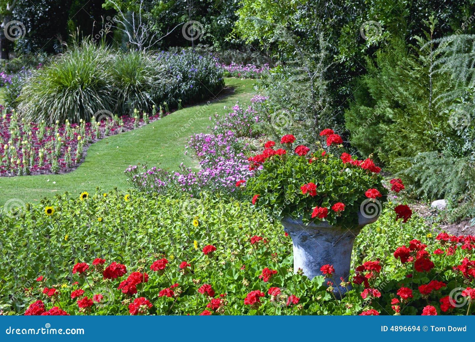 Jardim de flor
