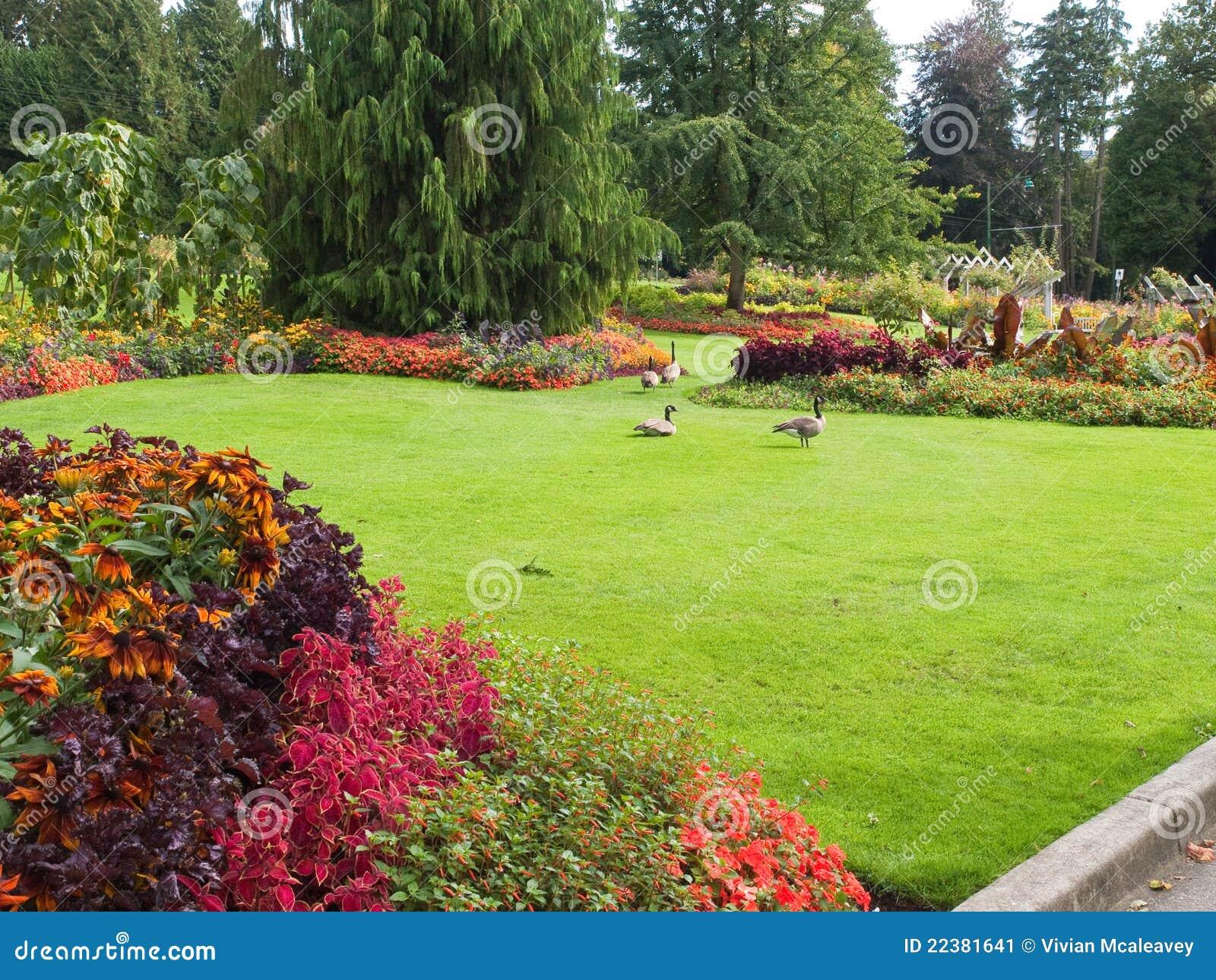 imagens de jardim gramado:Lawn and Flower Gardens