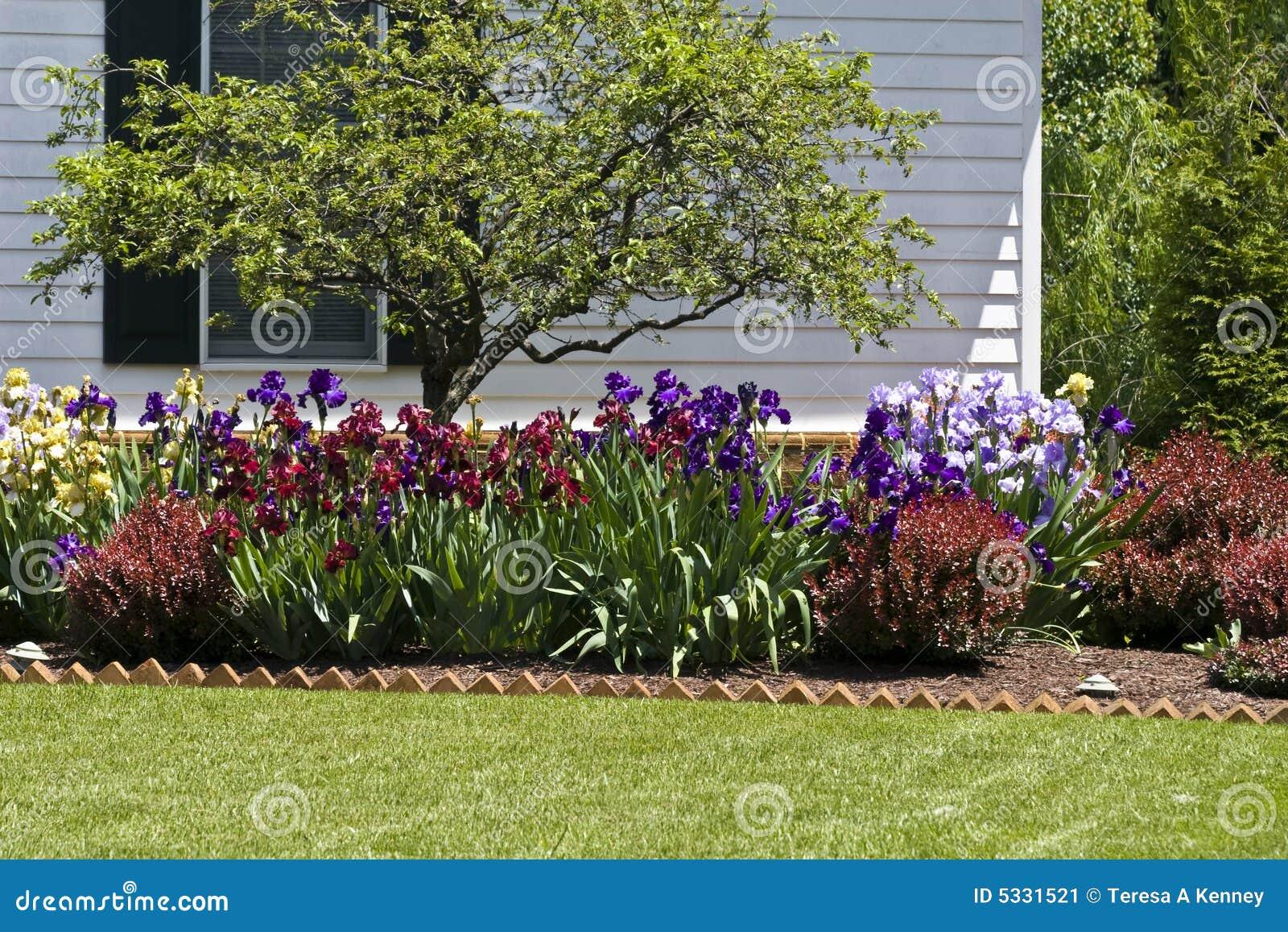 Jardim De Flor Residencial Imagem de Stock  Imagem 5331521