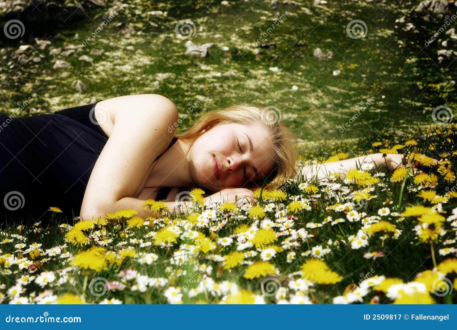 flores de jardim fotos:Jardim De Flores Fotografia de Stock Royalty Free – Imagem: 2509817
