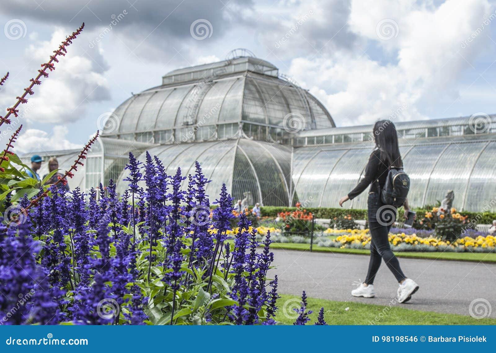 Jardim de Kew, a estufa tropical